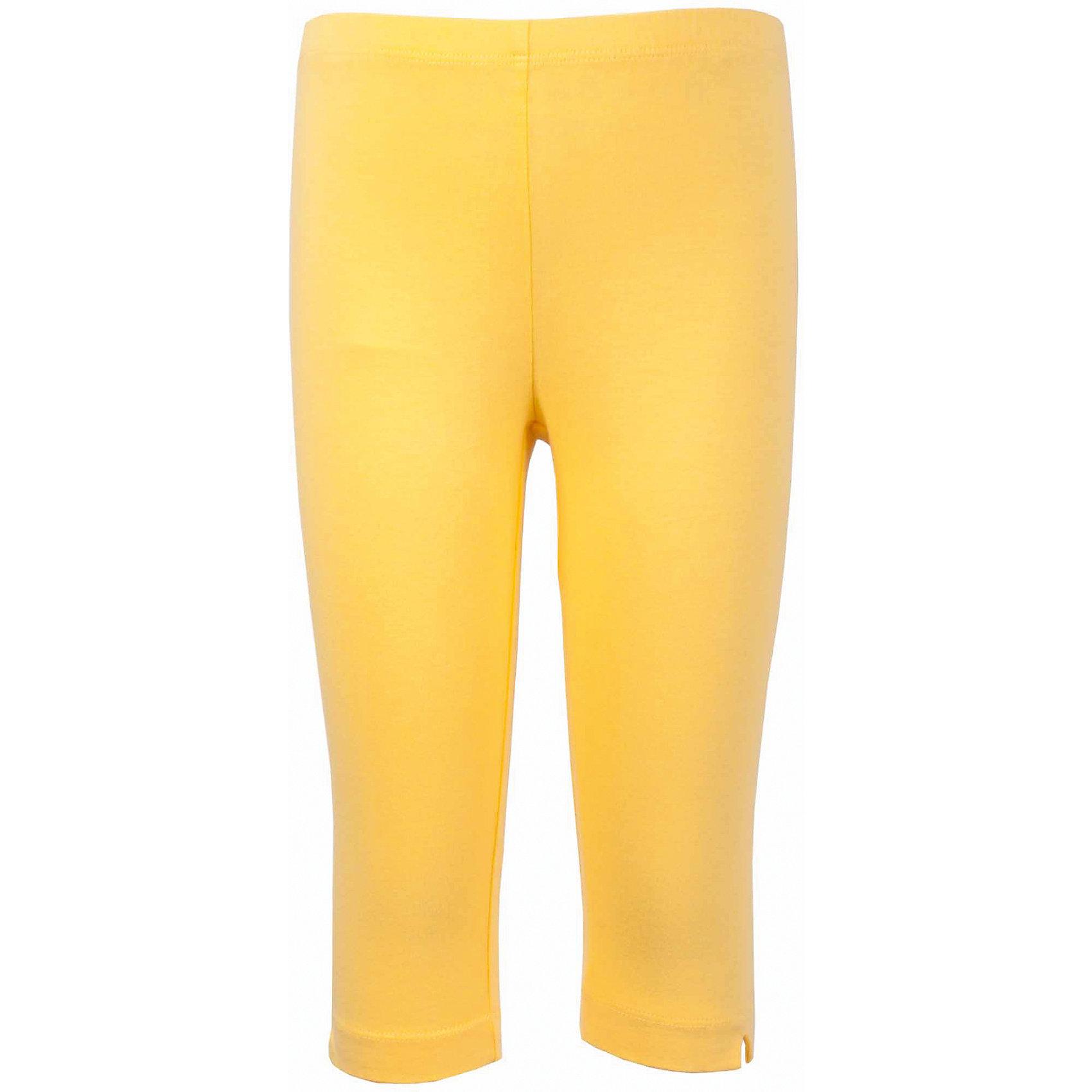 Леггинсы для девочки GulliverЛеггинсы<br>Характеристики товара:<br><br>• цвет: желтый<br>• материал: 95% хлопок 5% эластан<br>• укороченные<br>• мягкая резинка в поясе<br>• сезон: лето<br>• страна бренда: Российская Федерация<br>• страна производства: Китай<br><br>Яркие лосины жёлтого цвета для девочки от бренда Гулливер. Леггинсы укороченные, длина чуть ниже колена.<br><br>Леггинсы для девочки от известного бренда Gulliver можно купить в нашем интернет-магазине.<br><br>Ширина мм: 123<br>Глубина мм: 10<br>Высота мм: 149<br>Вес г: 209<br>Цвет: желтый<br>Возраст от месяцев: 24<br>Возраст до месяцев: 36<br>Пол: Женский<br>Возраст: Детский<br>Размер: 104,110,116,98<br>SKU: 5483544