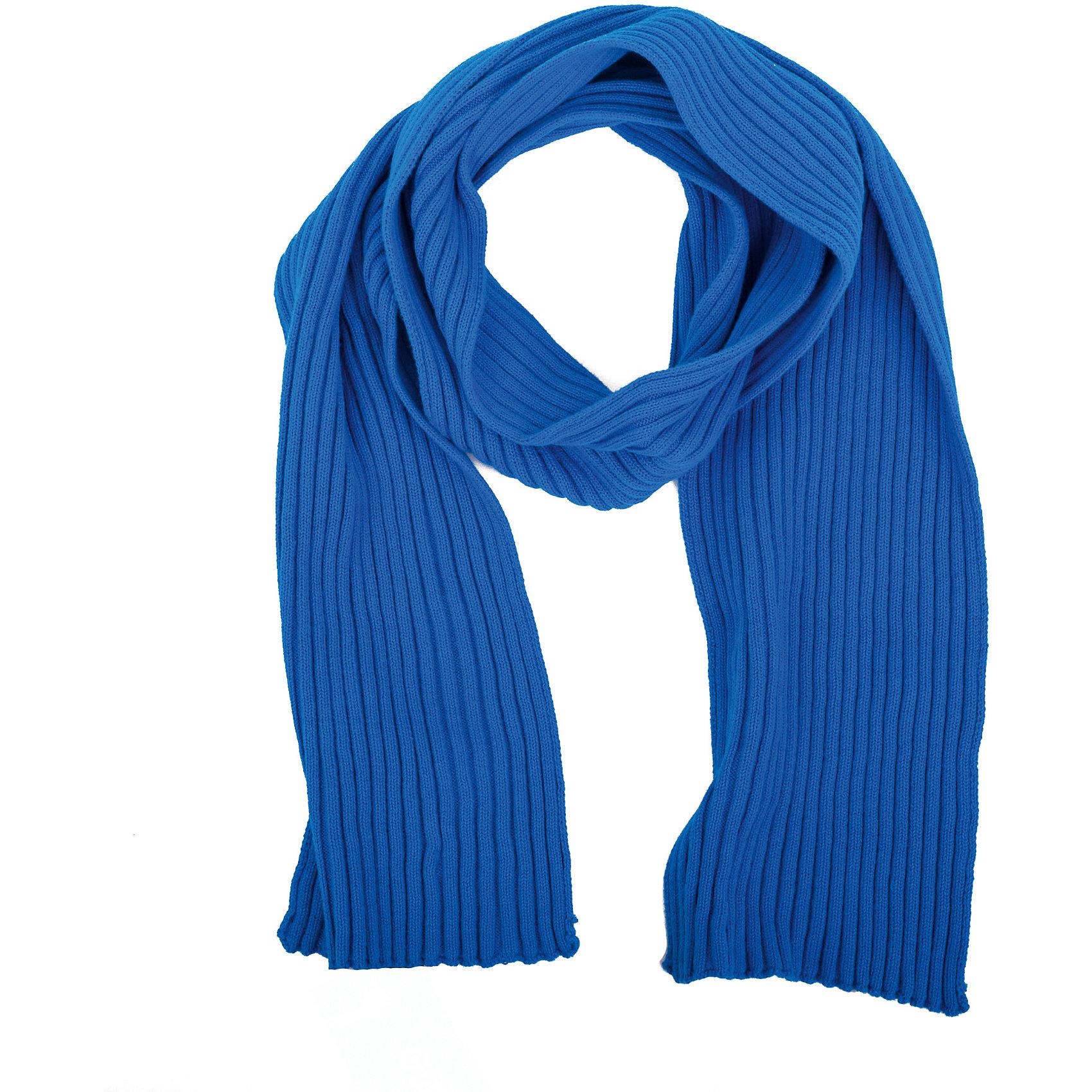 Шарф для мальчика GulliverСтильный вязаный шарф - важный элемент повседневного образа. Он защитит юного модника от весенней прохлады, а также придаст образу элегантную небрежность. Если вы хотите купить детский шарф не только для тепла и уюта, но и для создания завершенного весеннего лука, яркий синий шарф из мягкого хлопка - прекрасный выбор!<br>Состав:<br>100% хлопок<br><br>Ширина мм: 88<br>Глубина мм: 155<br>Высота мм: 26<br>Вес г: 106<br>Цвет: синий<br>Возраст от месяцев: 24<br>Возраст до месяцев: 72<br>Пол: Мужской<br>Возраст: Детский<br>Размер: one size<br>SKU: 5483946
