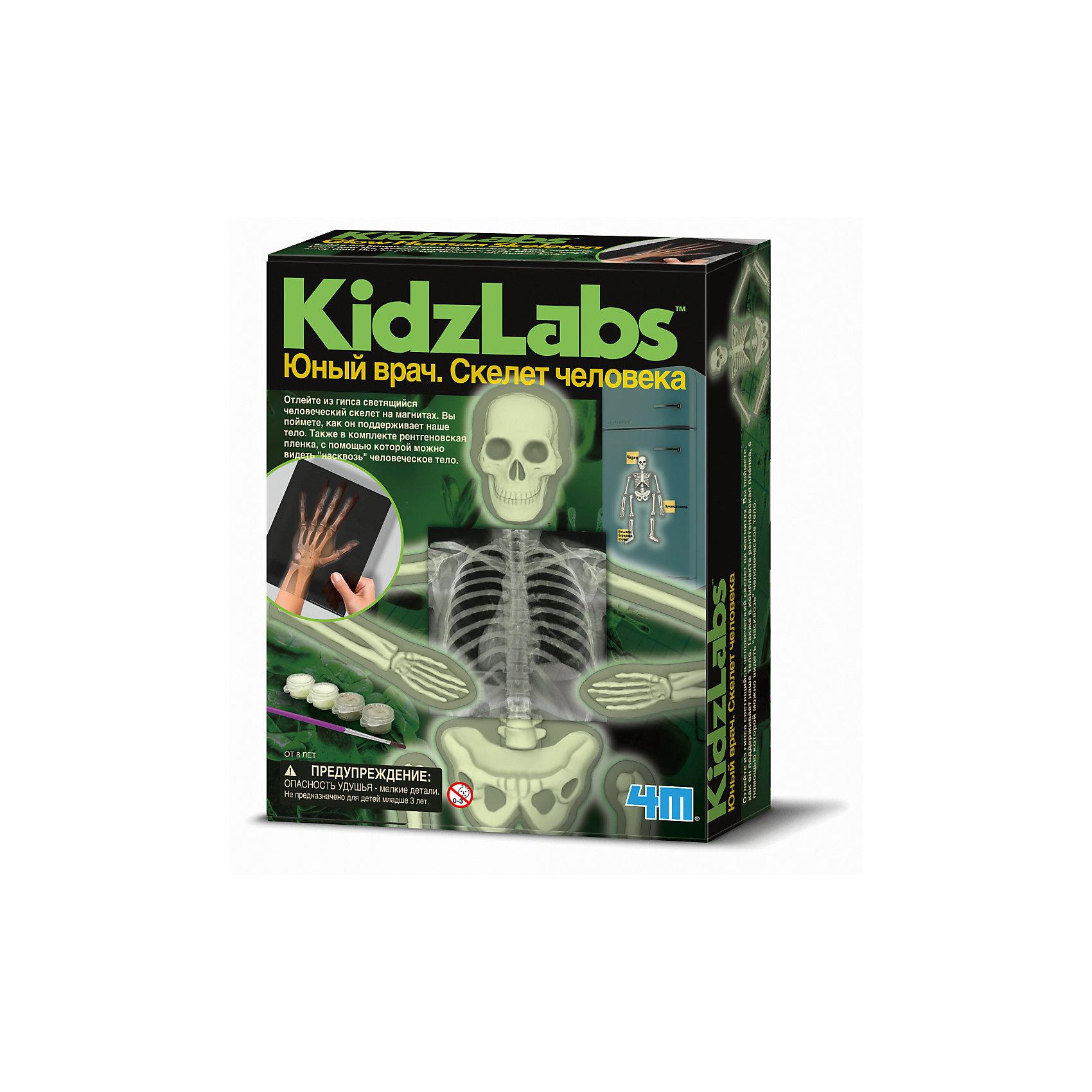 Набор Юный врач. Скелет человекаЭксперименты и опыты<br>Набор Юный врач. Скелет человека.<br><br>Характеристика: <br><br>• Возраст: от 8 лет<br>• Материал: гипс, пластик. <br>• Размер: 6x17х21,5 см.<br>• Комплектация: формы для отливки костей, рентгеновские пленки, настенная схема скелета, пакеты с гипсовым порошком, кисть, серая и светящаяся краски, магниты в форме костей.<br>• Развивает внимание, мелкую моторику, воображение; расширяет кругозор. <br><br>Набор Юный врач. Скелет человека расскажет детям о том, как устроено наше тело. В наборе есть все, чтобы дать представления о разных костях, их строении и функциях. Благодаря специальным формам, ребенок сможет сам отлить кости человеческого скелета. Инструменты, выполненные очень реалистично, сделают игру еще интереснее и увлекательнее. <br>Все детали изготовлены из высококачественного прочного пластика абсолютно безопасного для детей.<br>Игры с набором помогут развить мелкую моторику и внимание, расширят кругозор ребенка. Прекрасный подарок для вашего юного врача! <br><br>Набор Юный врач. Скелет человека можно купить в нашем интернет-магазине.<br><br>Ширина мм: 215<br>Глубина мм: 170<br>Высота мм: 60<br>Вес г: 552<br>Возраст от месяцев: 96<br>Возраст до месяцев: 2147483647<br>Пол: Унисекс<br>Возраст: Детский<br>SKU: 5487897