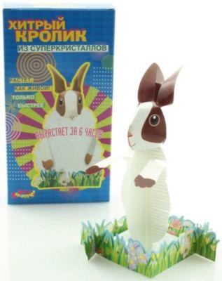 Good Hand Набор Хитрый кролик