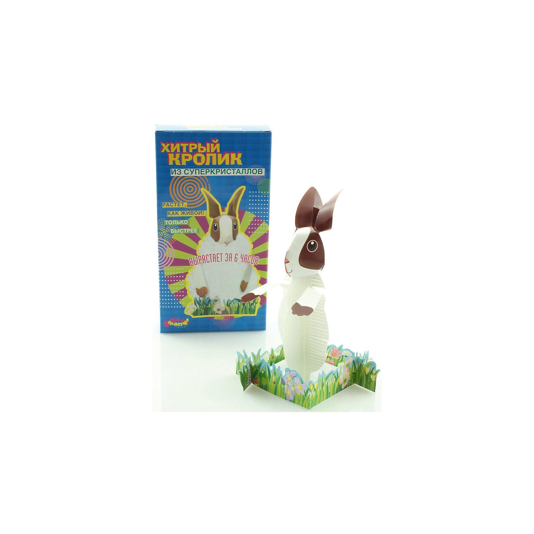 Набор Хитрый кроликКристаллы<br>Набор Хитрый кролик.<br><br>Характеристика: <br><br>• Возраст: от 5 лет<br>• Материал: фосфат аммония, пластик, бумага.<br>• Размер: 3х10,5х20 см.<br>• Время роста кристаллов: 6 ч.<br>• Комплектация: каркас, подставка-контейнер, изгородь, жидкость для роста кристаллов.<br>• Развивает внимание, мелкую моторику, воображение; расширяет кругозор. <br>• Использовать под присмотром взрослых.<br><br>Хочешь вырастить необычного кролика из кристаллов? Тогда этот набор для тебя. Нужно лишь смочить бумажную основу реагентом и немного подождать. Пушистая переливающая шубка кролика, приведет в восторг вашего юного химика.<br>Занятия с набором расширяют кругозор детей, развивают мышление, внимание и фантазию.<br><br>Набор Хитрый кролик можно купить в нашем интернет-магазине.<br><br>Ширина мм: 200<br>Глубина мм: 105<br>Высота мм: 30<br>Вес г: 100<br>Возраст от месяцев: 60<br>Возраст до месяцев: 2147483647<br>Пол: Унисекс<br>Возраст: Детский<br>SKU: 5487909