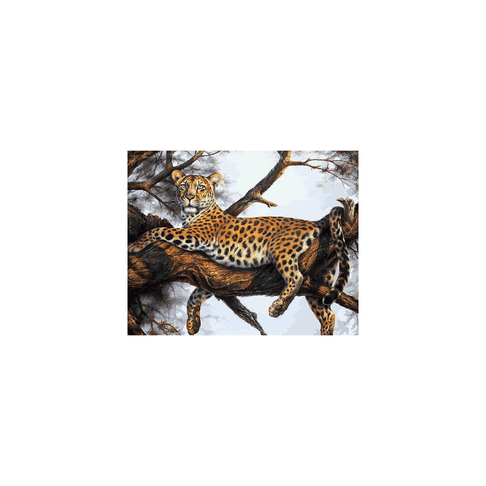 Живопись на холсте Леопард на отдыхе, 40*50 смРисование<br>Живопись на холсте Леопард на отдыхе, 40*50 см<br><br>Характеристики:<br><br>• Вес: 850<br>• Размер: 40х50<br>• Краски: акриловые, быстросохнущие<br>• Количество цветов: 32<br>• В наборе: холст на подрамнике, настенное крепление, контрольный лист с рисунком, 32 красок, 3 кисти<br><br>Данный набор позволит любому человеку ощутить себя профессиональным художником. В комплект входит холст с нанесенным на него рисунком по номерам, акриловые краски на водной основе, специальный контрольный лист, предотвращающий ошибки и 3 удобные кисти разных размеров. <br><br>Рисовать на холсте очень удобно, а благодаря номерам на картине и баночках с краской - это совсем просто. Цвета ложатся ровным слоем, перекрывая нанесенный рисунок. Если вы боитесь, что где-то ошиблись – приложите контрольный лист, который полностью повторяет схему. Акриловые краски совершенно безопасны и не имеют запаха. А благодаря настенному креплению вы сможете повесить готовую работу.<br><br>Живопись на холсте Леопард на отдыхе, 40*50 см можно купить в нашем интернет-магазине.<br><br>Ширина мм: 510<br>Глубина мм: 410<br>Высота мм: 250<br>Вес г: 850<br>Возраст от месяцев: 72<br>Возраст до месяцев: 2147483647<br>Пол: Унисекс<br>Возраст: Детский<br>SKU: 5500414