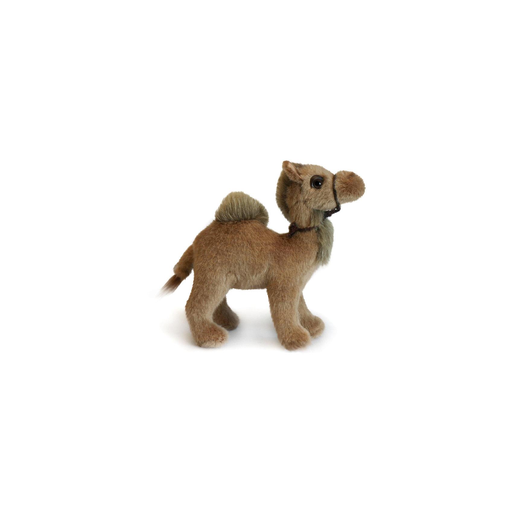 Верблюд, 18 см, HansaМягкие игрушки животные<br>Верблюд, 18 см, Hansa (Ханса)<br><br>Характеристики:<br><br>• реалистичная мягкая игрушка<br>• приятная на ощупь<br>• прочный каркас<br>• размер игрушки: 18 см<br>• материал: металл, плюш, наполнитель, пластик<br>• размер упаковки: 10х18 см<br>• вес: 320 грамм<br><br>Мягкий верблюд Hansa станет отличным дополнением к коллекции игрушек ребенка. Игрушка имеет прочный титановый каркас, мягкую поверхность и синтепоновый наполнитель. Детали выполнены очень реалистично. Приятная на ощупь игрушка подарит малышу много радостных эмоций. А родители с радостью познакомят малыша с верблюдом и его особенностями.<br><br>Верблюда, 18 см, Hansa (Ханса) можно купить в нашем интернет-магазине.<br><br>Ширина мм: 180<br>Глубина мм: 100<br>Высота мм: 190<br>Вес г: 320<br>Возраст от месяцев: 36<br>Возраст до месяцев: 2147483647<br>Пол: Унисекс<br>Возраст: Детский<br>SKU: 5503280