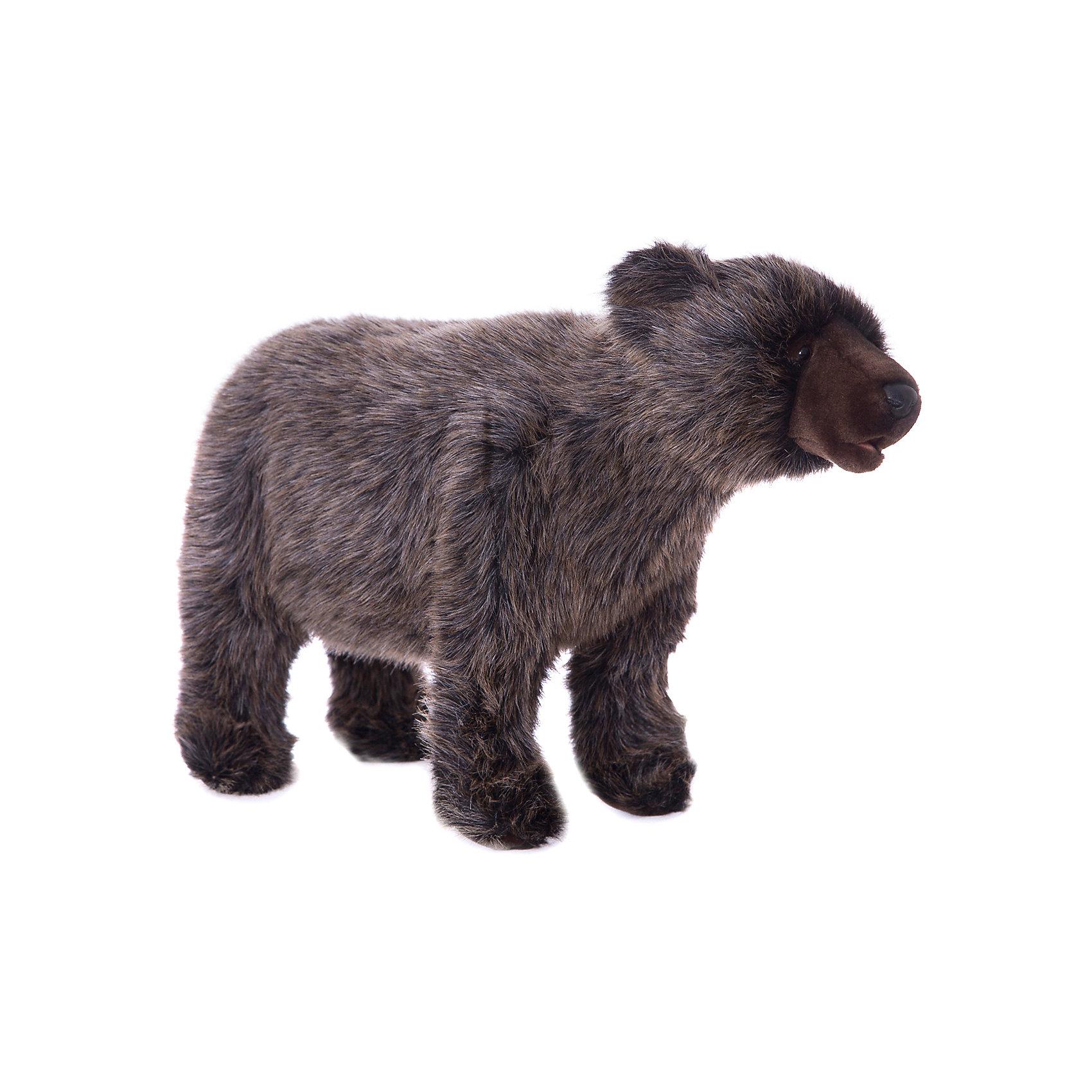 Медвежонок Гризли, идущий, 60 см, HansaМедвежата<br>Hansa  - мировой лидер по производству  натуралистичных, максимально похожих на настоящих животных, мягких игрушек. <br>Ханса воссоздает  экстерьер и окрас животных, фактуру шерсти, характерные позы и даже характер. <br>Благодаря своей реалистичности, игрушки HANSA позволяют любоваться дикими животными, сохраняя их жизнь.<br><br>Ширина мм: 600<br>Глубина мм: 200<br>Высота мм: 360<br>Вес г: 705<br>Возраст от месяцев: 36<br>Возраст до месяцев: 2147483647<br>Пол: Унисекс<br>Возраст: Детский<br>SKU: 5503302