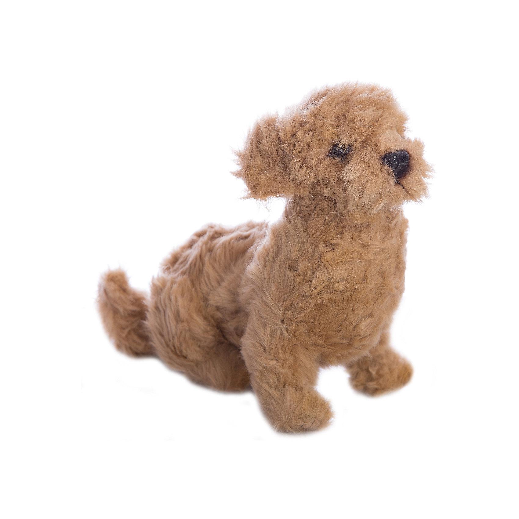Филиппинская собака, 30 см, HansaКошки и собаки<br>Hansa  - мировой лидер по производству  натуралистичных, максимально похожих на настоящих животных, мягких игрушек. <br>Ханса воссоздает  экстерьер и окрас животных, фактуру шерсти, характерные позы и даже характер. <br>Благодаря своей реалистичности, игрушки HANSA позволяют любоваться дикими животными, сохраняя их жизнь.<br><br>Ширина мм: 220<br>Глубина мм: 300<br>Высота мм: 150<br>Вес г: 840<br>Возраст от месяцев: 36<br>Возраст до месяцев: 2147483647<br>Пол: Унисекс<br>Возраст: Детский<br>SKU: 5503304