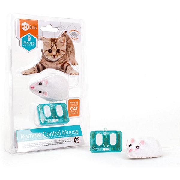 Микро-робот Mouse Cat Toy на радиоуправлении, HexbugИнтерактивные животные<br>Микро-робот Mouse Cat Toy на радиоуправлении, Hexbug (Хексбаг)<br><br>Характеристики:<br><br>• устойчив к механическим повреждениям<br>• управление пультом<br>• 2 канала<br>• материал: пластик, металл, искусственная шерсть<br>• батарейки: LR44 - 2 Шт.<br>• размер упаковки: 22х13х3 см<br>• вес: 80 грамм<br><br>Mouse Cat Toy - микро-робот для игр с домашними питомцами. Робот выполнен в виде маленькой мышки с хвостиком, ушками и глазками, похожими на настоящие. Мышка очень быстро и реалистично двигается, чтобы ваш питомец не заскучал. Вы можете управлять роботом при помощи пульта управления. Мышь устойчива к таким механическим повреждениям как царапины и удары лапой.<br><br>Микро-робота Mouse Cat Toy на радиоуправлении, Hexbug (Хексбаг) вы можете купить в нашем интернет-магазине.<br>Ширина мм: 220; Глубина мм: 30; Высота мм: 130; Вес г: 80; Возраст от месяцев: 36; Возраст до месяцев: 2147483647; Пол: Унисекс; Возраст: Детский; SKU: 5506930;