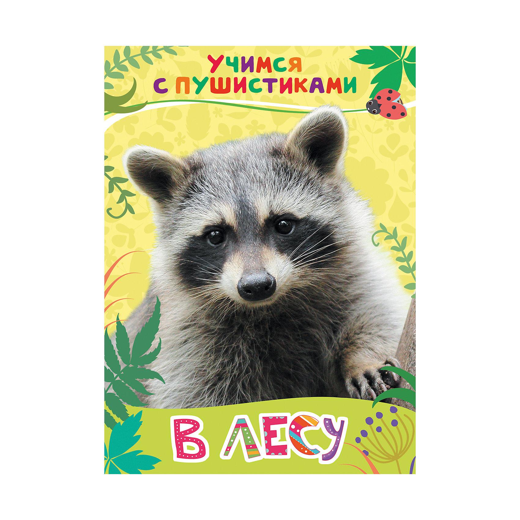 Стихи В лесу: учимся с пушистикамиЭнциклопедии для малышей<br>Стихи В лесу. Учимся с пушистиками<br><br>Характеристики:<br><br>• ISBN: 9785353081531<br>• Количество страниц: 8<br>• Формат: А4<br>• Обложка: твердая <br>• Материал: картон<br><br>Эта книга расскажет вашему ребенку об обитателях российского леса - лисах, ежах, енотах, белках и многих других удивительных животных, которых можно встретить на обычной прогулке за городом. Книга снабжена красочными фотографиями, рассматривая которые, ваш ребенок сможет ознакомиться с тем, как выглядят все эти звери. А занимательные стихи современной поэтессы - Галины Дядиной расскажут детям о том, как живут и как ведут себя эти удивительные создания.<br><br>Стихи В лесу. Учимся с пушистиками можно купить в нашем интернет-магазине.<br><br>Ширина мм: 218<br>Глубина мм: 159<br>Высота мм: 40<br>Вес г: 110<br>Возраст от месяцев: -2147483648<br>Возраст до месяцев: 2147483647<br>Пол: Унисекс<br>Возраст: Детский<br>SKU: 5507118