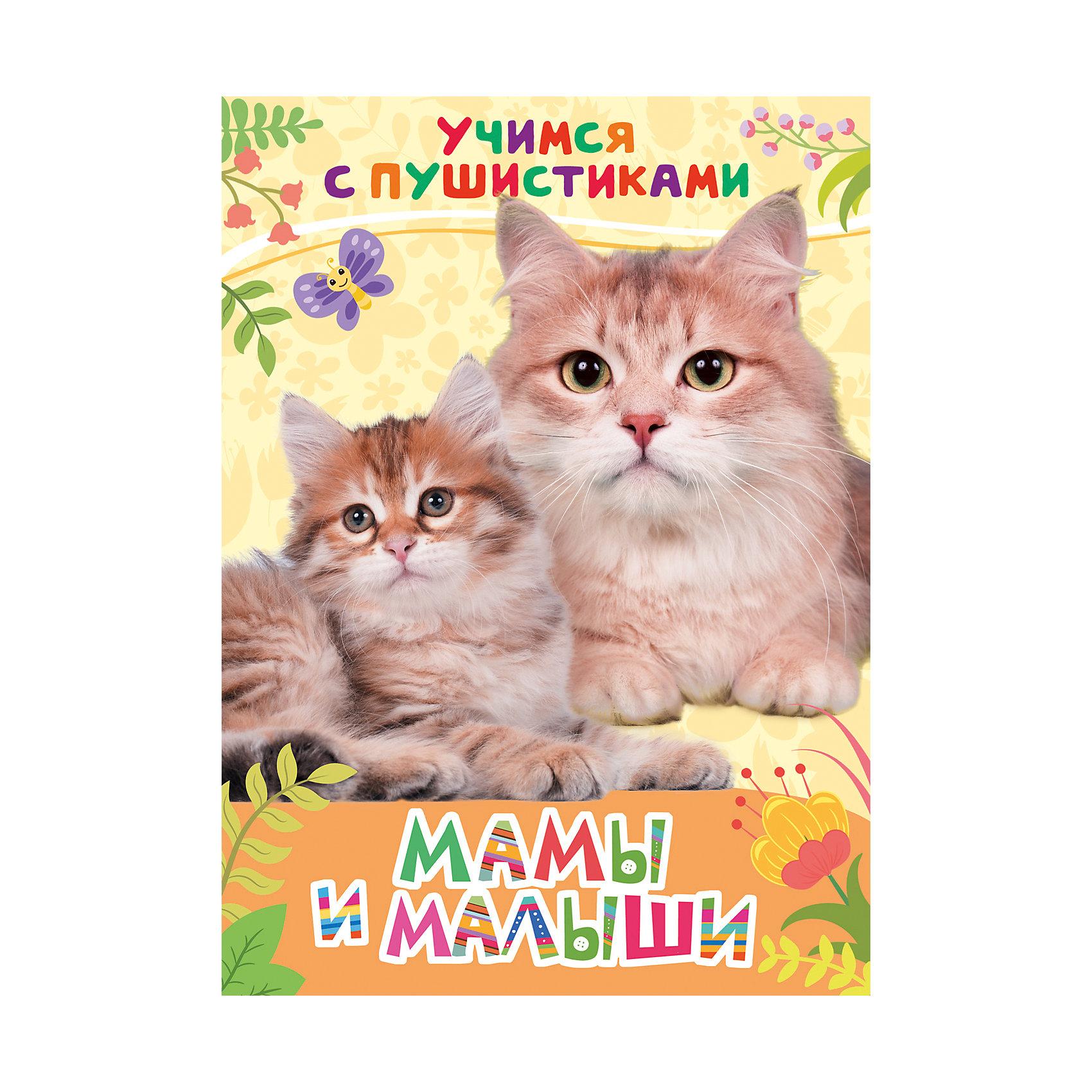 Стихи Мамы и малыши: учимся с пушистикамиЭнциклопедии для малышей<br>Стихи Мамы и малыши. Учимся с пушистиками<br><br>Характеристики:<br><br>• ISBN: 9785353081562<br>• Количество страниц: 8<br>• Формат: А4<br>• Обложка: твердая <br>• Материал: картон<br><br>Эта книга расскажет вашему ребенку об обитателях российского леса - лисах, ежах, енотах, белках и многих других удивительных животных, которых можно встретить на обычной прогулке за городом. Книга снабжена красочными фотографиями, рассматривая которые, ваш ребенок сможет ознакомиться с тем, как выглядят все эти звери. А занимательные стихи современной поэтессы - Галины Дядиной расскажут детям о том, как живут и как ведут себя эти удивительные создания.<br><br>Стихи Мамы и малыши. Учимся с пушистиками можно купить в нашем интернет-магазине.<br><br>Ширина мм: 218<br>Глубина мм: 159<br>Высота мм: 40<br>Вес г: 110<br>Возраст от месяцев: -2147483648<br>Возраст до месяцев: 2147483647<br>Пол: Унисекс<br>Возраст: Детский<br>SKU: 5507122