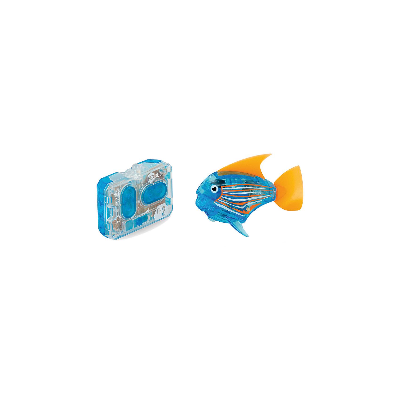 Микро-робот Aqua Bot, синий, HexbugИнтерактивные игрушки для малышей<br>Микро-робот Aqua Bot, синий, Hexbug (Хексбаг)<br><br>Характеристики:<br><br>• плавает в любом направлении<br>• автоматическое отключение вне воды<br>• цвет: синий<br>• размер: 8х4х2 см<br>• батарейки: AG13 - 2 шт. (входят в комплект)<br>• материал: пластик, металл<br>• размер упаковки: 19х6х4 см<br>• вес: 31 грамм<br><br>Aqua Bot - маленькая рыбка-робот, которая поразит вас своими размерами и ловкостью. Этот малыш быстро передвигается в воде в любом направлении. Положите микроробота в воду - и он тут же отправится покорять водное пространство. Если вытащить робота из воды, он автоматически отключается для экономии энергии. Такая замечательная игрушка, несомненно, понравится всем членам семьи!<br><br>Микро-робот Aqua Bot, синий, Hexbug (Хексбаг) можно купить в нашем интернет-магазине.<br><br>Ширина мм: 160<br>Глубина мм: 90<br>Высота мм: 120<br>Вес г: 85<br>Возраст от месяцев: 36<br>Возраст до месяцев: 2147483647<br>Пол: Унисекс<br>Возраст: Детский<br>SKU: 5507179