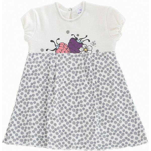 Боди-платье для девочки МамуляндияБоди<br>Боди-платье для девочки Мамуляндия<br>Боди-платье для девочки из дизайнерской коллекции Ягодки. Изготовлено из трикотажного полотна высшего качества.<br>Застёжка на кнопку из гипоаллергенного сплава без содержания никеля.<br>Гипоаллергенный принт на водной основе.<br>Удобное расположение кнопок для переодевания ребенка или смены подгузника. <br><br>Состав 100% хлопок (интерлок-пенье). <br>Рекомендации по уходу: стирать при 40 С, гладить при средней температуре, носить с удовольствием!<br>Состав:<br>100% хлопок<br><br>Ширина мм: 157<br>Глубина мм: 13<br>Высота мм: 119<br>Вес г: 200<br>Цвет: серый<br>Возраст от месяцев: 12<br>Возраст до месяцев: 18<br>Пол: Женский<br>Возраст: Детский<br>Размер: 86,62,68,74,80<br>SKU: 5513673