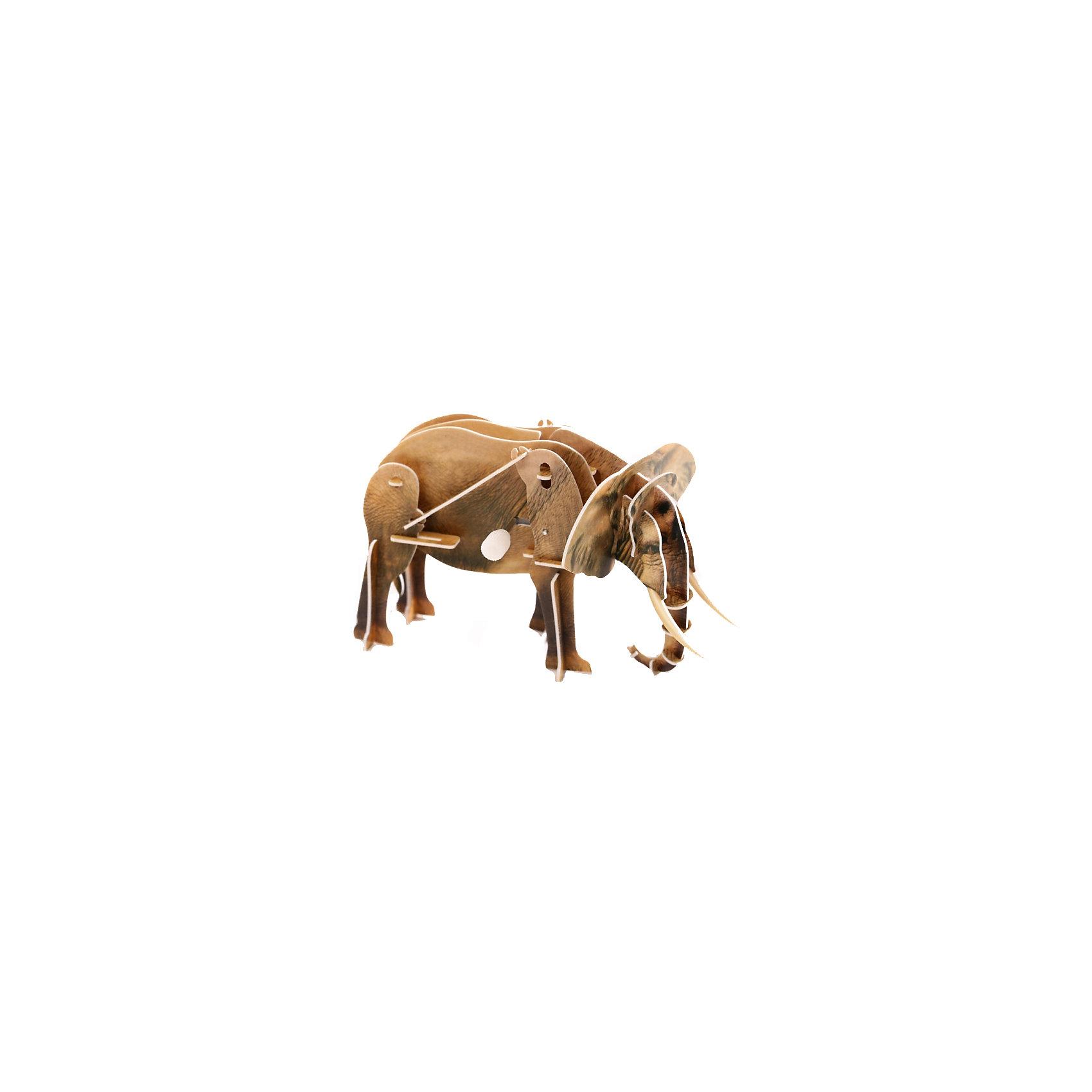 Конструктор – 3D пазл заводной: Слон, UFПластмассовые конструкторы<br>Пазл «Слон» с заводным механизмом – это качественная и интересная игрушка, которая развивает моторику и пространственное мышление. Пазл создается без клея, он складывается из пластиковых деталей, которые вставляются в специальные пазы. Одна из деталей пазла представляет собой коробочку с заводным механизмом. Она становится центральной частью фигурки слона. Заведя игрушку, можно будет наблюдать, как слон идет, перебирая лапами.<br><br>Ширина мм: 135<br>Глубина мм: 100<br>Высота мм: 25<br>Вес г: 47<br>Возраст от месяцев: 72<br>Возраст до месяцев: 1188<br>Пол: Унисекс<br>Возраст: Детский<br>SKU: 5516763