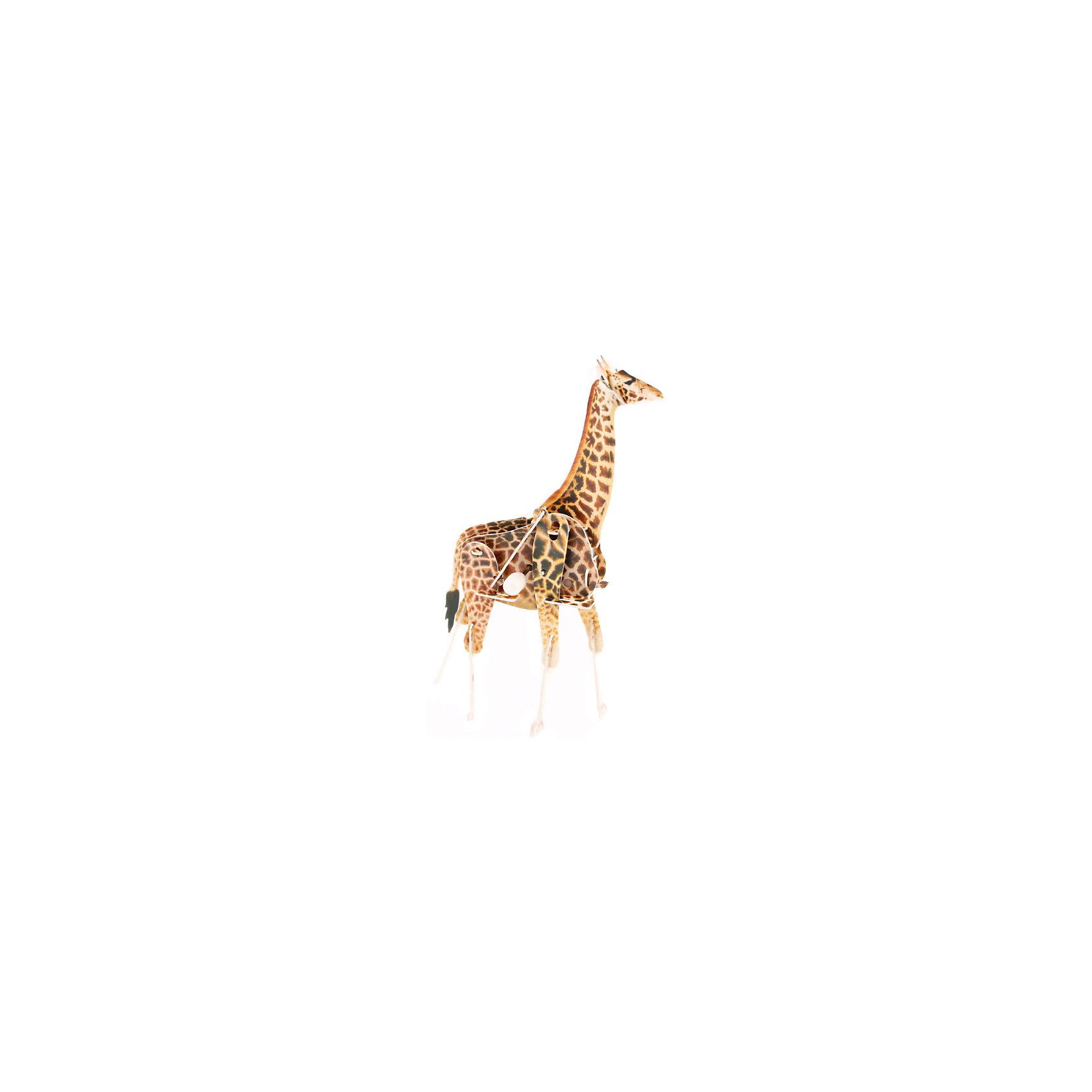 Конструктор – 3D пазл заводной: Жираф, UF3D пазлы<br>Заводной 3D-пазл – новое слово в детском творчестве! Чтобы его собрать, ребенку всего лишь понадобится соединить в верном порядке детали из тонкого, но крепкого пластика. При этом в пазл встраивается специальная коробочка с заводным механизмом, которая наделяет фигурку способностью двигаться. Стоит всего лишь завести игрушку, и объемный жираф начнет идти, перебирая ногами. Сборка пазла тренирует моторику и пространственное мышление.<br><br>Ширина мм: 135<br>Глубина мм: 100<br>Высота мм: 25<br>Вес г: 47<br>Возраст от месяцев: 72<br>Возраст до месяцев: 1188<br>Пол: Унисекс<br>Возраст: Детский<br>SKU: 5516767