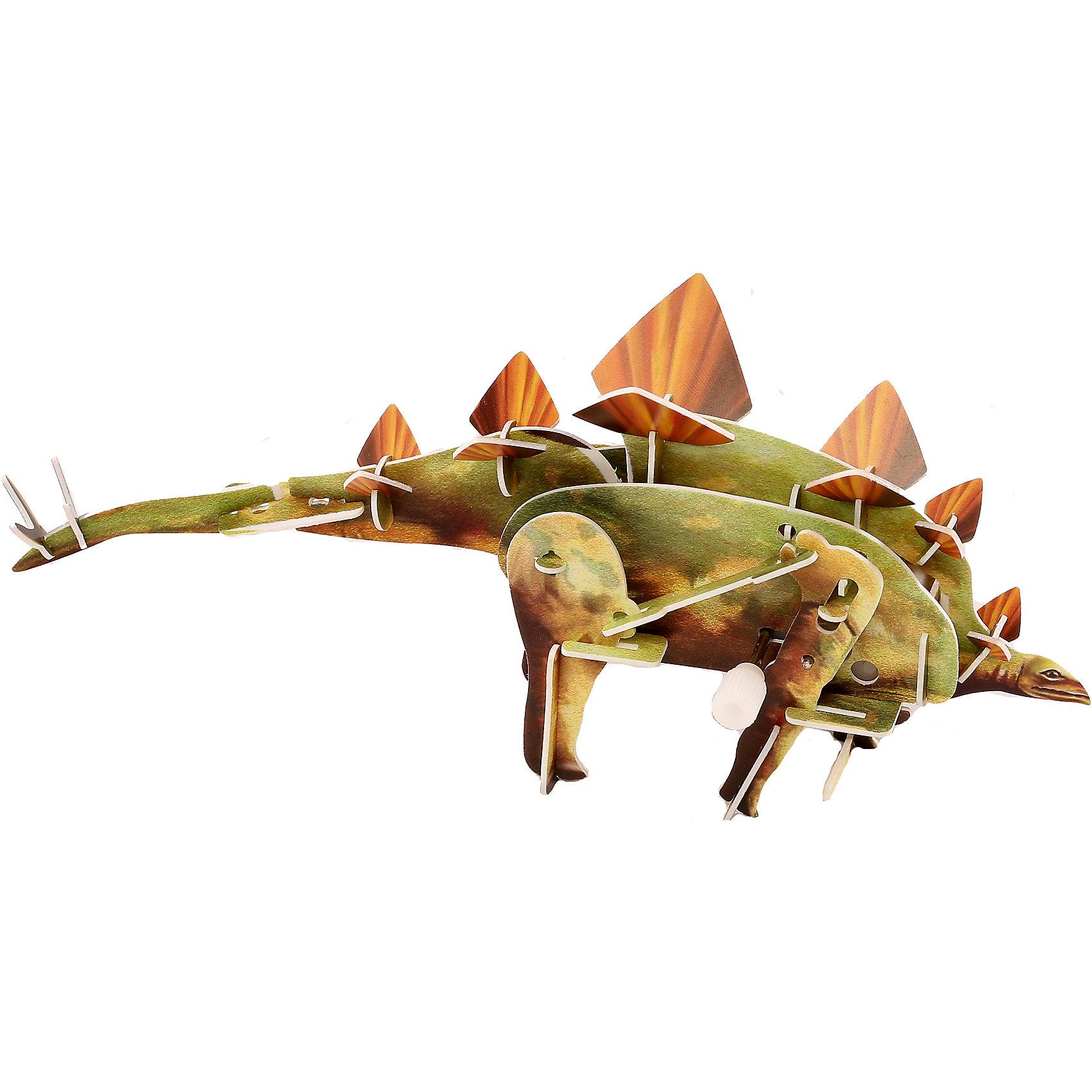 Конструктор – 3D пазл заводной: Стегозавр, UF3D пазлы<br>Заводной пазл «Стегозавр» - интересная головоломка для детей старше 6-ти лет. Ребенку нужно будет своими руками собрать объемную фигурку динозавра. Она собирается из пластиковых деталей, которые предварительно извлекаются из специальных листов. Сборка осуществляется без применения клея. Среди деталей имеется соединяющий заводной механизм. После сборки фигурка способна двигаться. Просто покрутите завод, и фигурка стегозавра начнет движение, перебирая ногами!<br><br>Ширина мм: 135<br>Глубина мм: 100<br>Высота мм: 25<br>Вес г: 47<br>Возраст от месяцев: 72<br>Возраст до месяцев: 1188<br>Пол: Унисекс<br>Возраст: Детский<br>SKU: 5516772