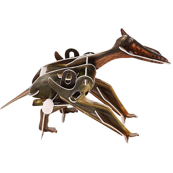 Конструктор – 3D пазл заводной: Птерозавр, UFПластмассовые конструкторы<br>Процесс создания объемного пазла достаточно прост, но очень увлекателен. В процессе работы с головоломкой ребенку нужно будет соединить отдельные детали в объемную фигурку летающего динозавра птеранодона. Причем, сборка осуществляется без клея. Получившаяся фигурка имеет один интересный нюанс. Среди деталей имеется маленькая пластиковая коробочка с заводным механизмом. Благодаря ей получившаяся фигурка динозавра становится подвижной, и динозавр может ходить!<br>Ширина мм: 135; Глубина мм: 100; Высота мм: 25; Вес г: 47; Возраст от месяцев: 72; Возраст до месяцев: 1188; Пол: Унисекс; Возраст: Детский; SKU: 5516773;