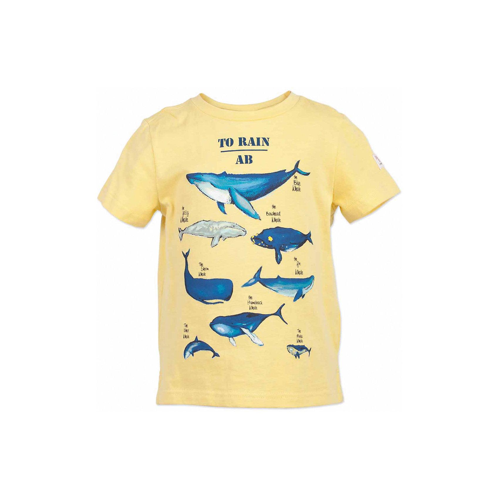 Футболка для мальчика  BUTTON BLUEФутболки, поло и топы<br>Футболка для мальчика  BUTTON BLUE<br>Желтая футболка - не только базовая вещь в гардеробе ребенка, но и залог хорошего летнего настроения! Если вы решили купить недорогую яркую футболку для мальчика, выберете модель футболки с оригинальным принтом, и ваш ребенок будет доволен! Низкая цена не окажет влияния на бюджет семьи, позволив создать интересный базовый гардероб для долгожданных каникул!<br>Состав:<br>100%  хлопок<br><br>Ширина мм: 199<br>Глубина мм: 10<br>Высота мм: 161<br>Вес г: 151<br>Цвет: желтый<br>Возраст от месяцев: 144<br>Возраст до месяцев: 156<br>Пол: Мужской<br>Возраст: Детский<br>Размер: 158,98,104,110,116,122,128,134,140,146,152<br>SKU: 5524233