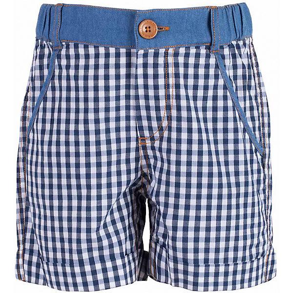 Шорты для мальчика  BUTTON BLUEШорты, бриджи, капри<br>Шорты для мальчика  BUTTON BLUE<br>Модные клетчатые шорты на резинке - прекрасное решение на каждый день! И дома, и в лагере, и на спортивной площадке шорты для мальчика обеспечат комфорт. Изюминка модели - оформление пояса джинсовой тканью. Оригинальная комбинация делает шорты интересными и необычными. Купить недорого детские шорты от Button Blue, значит, сделать каждый летний день ребенка радостным и беззаботным!<br>Состав:<br>100%  хлопок<br><br>Ширина мм: 191<br>Глубина мм: 10<br>Высота мм: 175<br>Вес г: 273<br>Цвет: синий<br>Возраст от месяцев: 36<br>Возраст до месяцев: 48<br>Пол: Мужской<br>Возраст: Детский<br>Размер: 104,98,116<br>SKU: 5524630