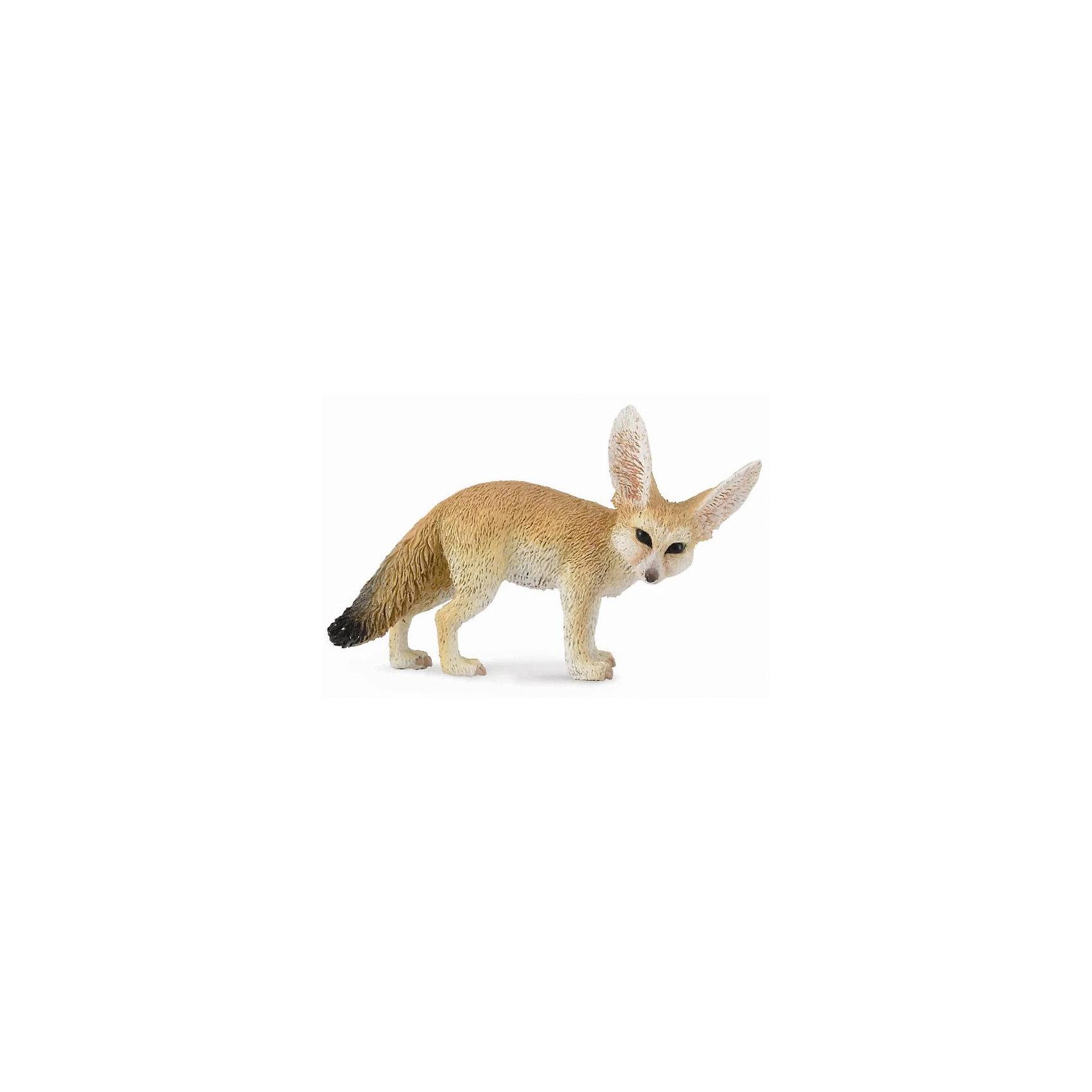 Фенек, CollectaМир животных<br><br><br>Ширина мм: 200<br>Глубина мм: 10<br>Высота мм: 10<br>Вес г: 50<br>Возраст от месяцев: 36<br>Возраст до месяцев: 192<br>Пол: Унисекс<br>Возраст: Детский<br>SKU: 5534505