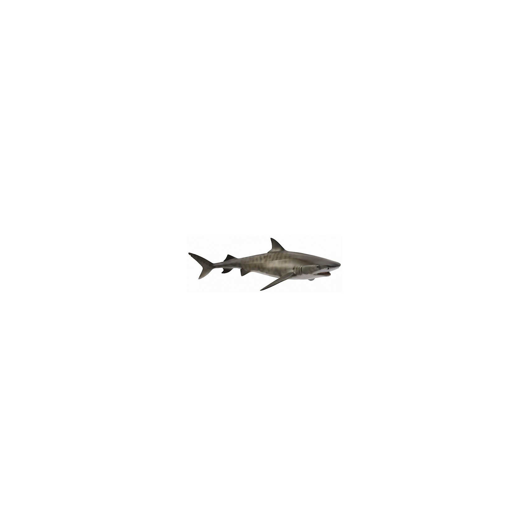 Тигровая акула, L, CollectaМир животных<br><br><br>Ширина мм: 200<br>Глубина мм: 10<br>Высота мм: 10<br>Вес г: 150<br>Возраст от месяцев: 36<br>Возраст до месяцев: 192<br>Пол: Унисекс<br>Возраст: Детский<br>SKU: 5534507