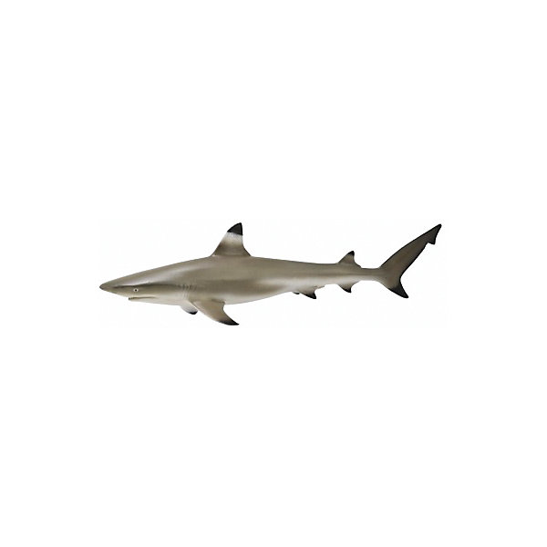Рифовая акула (M), CollectaМир животных<br><br><br>Ширина мм: 200<br>Глубина мм: 10<br>Высота мм: 10<br>Вес г: 35<br>Возраст от месяцев: 36<br>Возраст до месяцев: 192<br>Пол: Унисекс<br>Возраст: Детский<br>SKU: 5534510