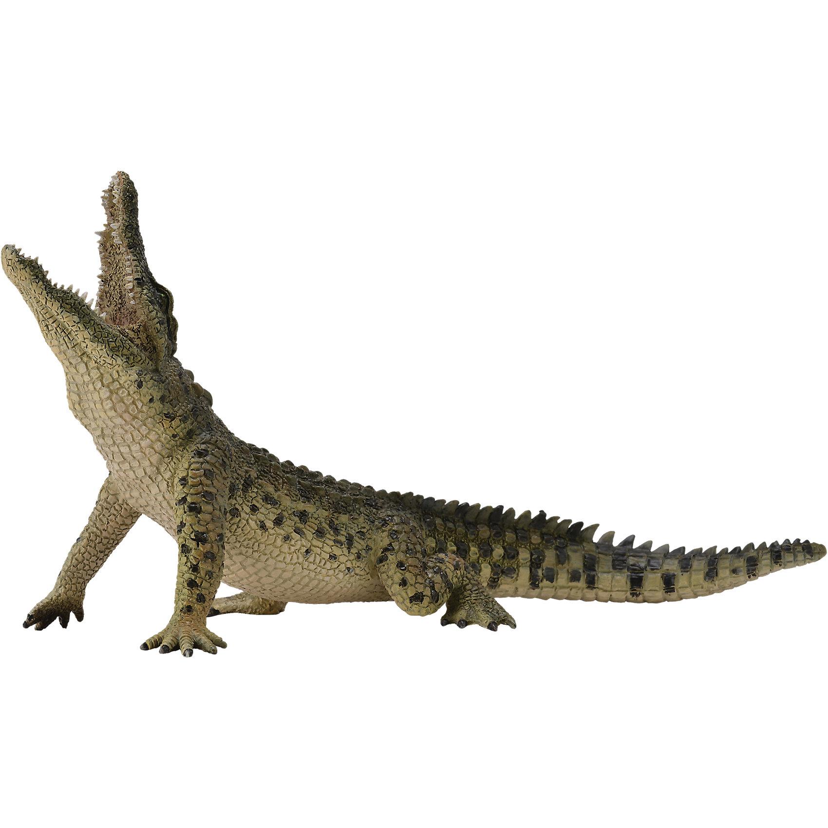 Нильский крокодил (XL), CollectaМир животных<br><br><br>Ширина мм: 200<br>Глубина мм: 10<br>Высота мм: 10<br>Вес г: 94<br>Возраст от месяцев: 36<br>Возраст до месяцев: 192<br>Пол: Унисекс<br>Возраст: Детский<br>SKU: 5534512