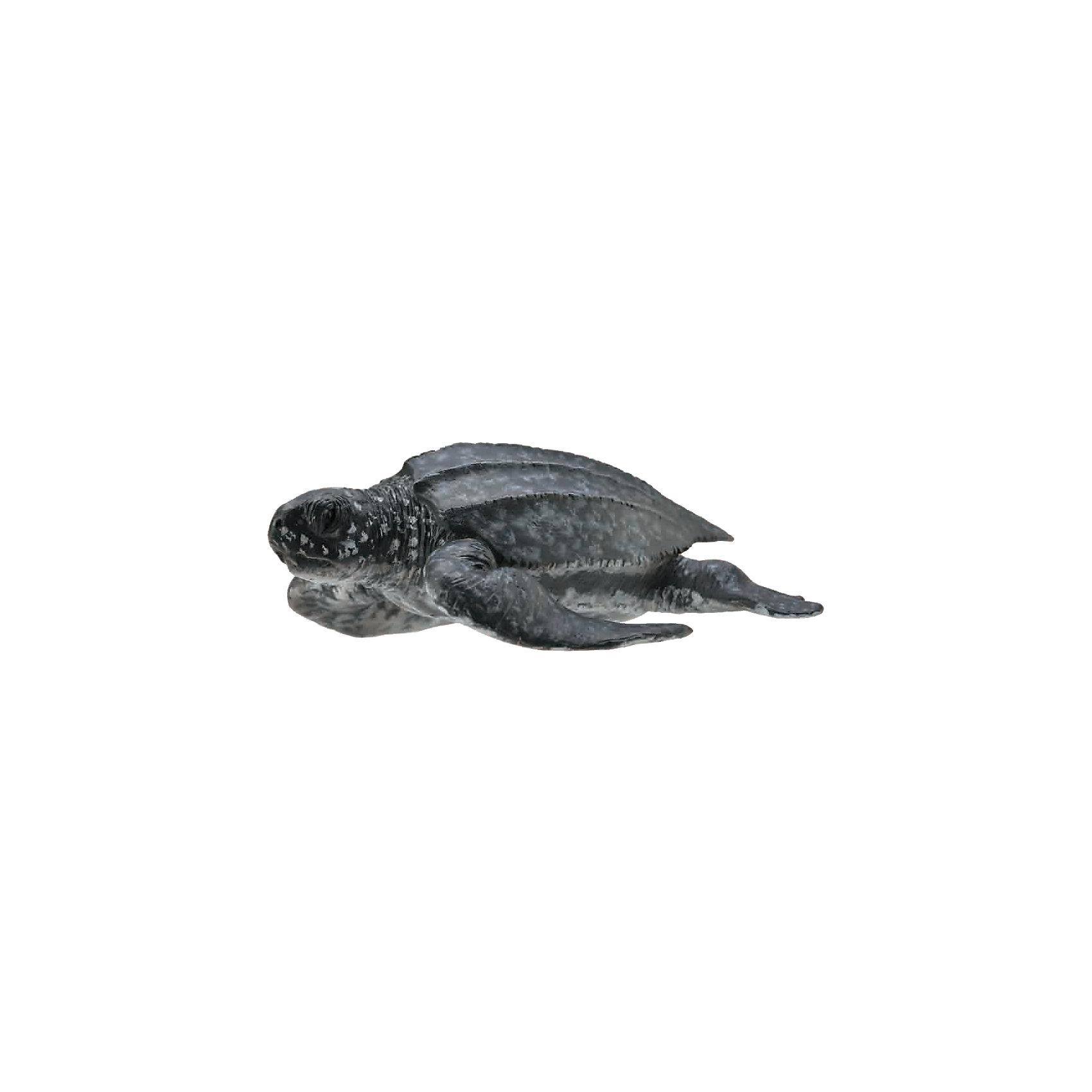 Кожистая черепаха (M), CollectaМир животных<br><br><br>Ширина мм: 200<br>Глубина мм: 10<br>Высота мм: 10<br>Вес г: 20<br>Возраст от месяцев: 36<br>Возраст до месяцев: 192<br>Пол: Унисекс<br>Возраст: Детский<br>SKU: 5534519
