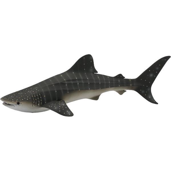 Китовая акула, XL, CollectaМир животных<br><br>Ширина мм: 200; Глубина мм: 10; Высота мм: 10; Вес г: 40; Возраст от месяцев: 36; Возраст до месяцев: 192; Пол: Унисекс; Возраст: Детский; SKU: 5534521;