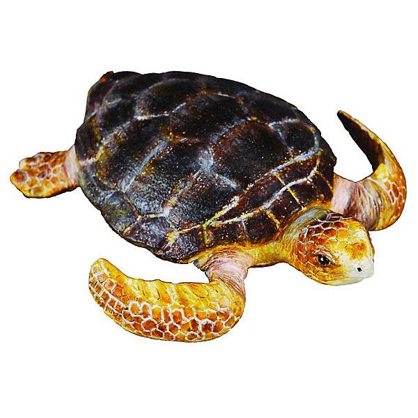 Грифовая Черепаха, M, CollectaМир животных<br><br><br>Ширина мм: 200<br>Глубина мм: 10<br>Высота мм: 10<br>Вес г: 13<br>Возраст от месяцев: 36<br>Возраст до месяцев: 192<br>Пол: Унисекс<br>Возраст: Детский<br>SKU: 5534527