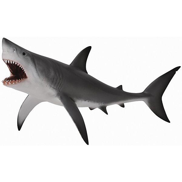 Акула большая белая (XL), CollectaМир животных<br><br>Ширина мм: 200; Глубина мм: 10; Высота мм: 10; Вес г: 46; Возраст от месяцев: 36; Возраст до месяцев: 192; Пол: Унисекс; Возраст: Детский; SKU: 5534533;