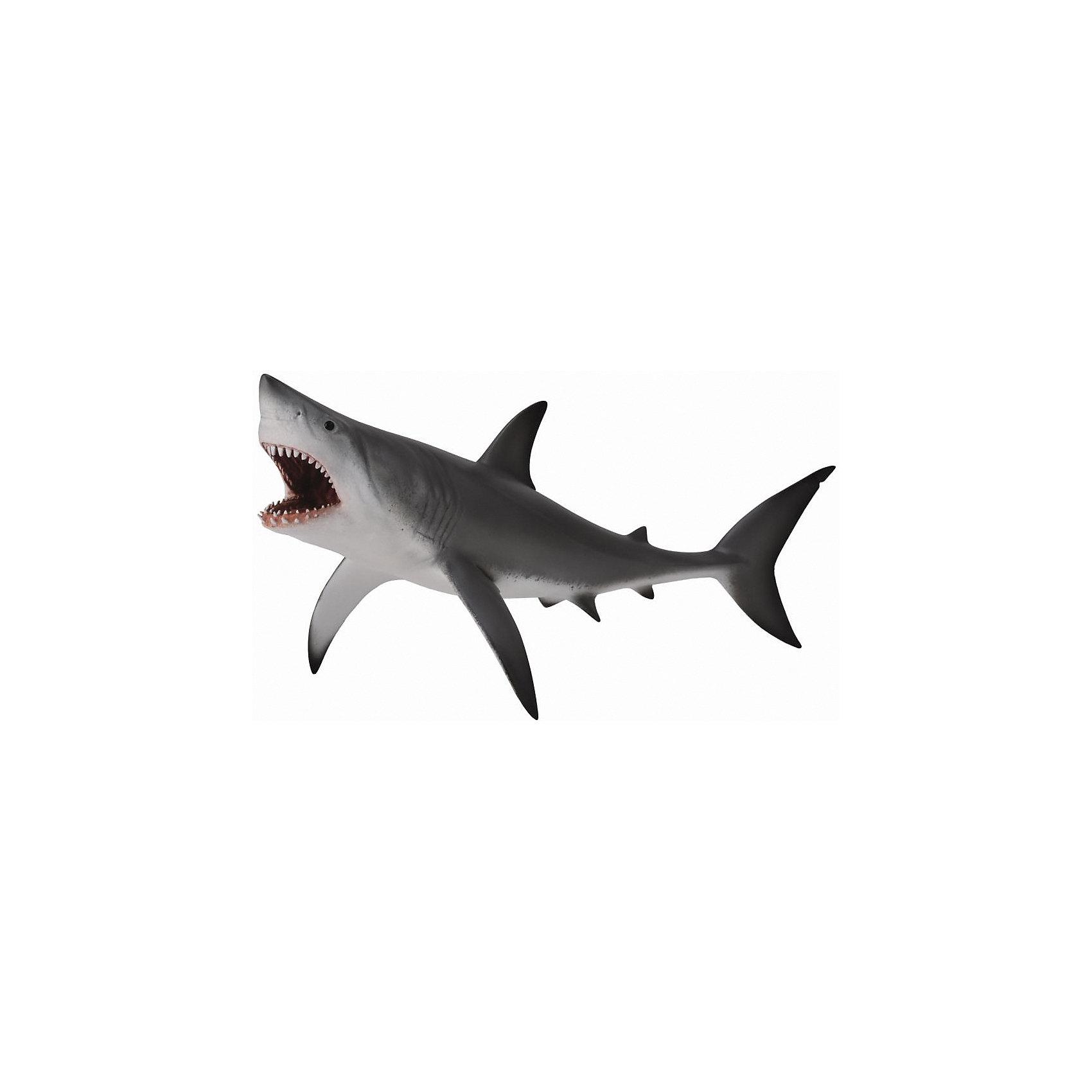 Акула большая белая (XL), CollectaМир животных<br><br><br>Ширина мм: 200<br>Глубина мм: 10<br>Высота мм: 10<br>Вес г: 46<br>Возраст от месяцев: 36<br>Возраст до месяцев: 192<br>Пол: Унисекс<br>Возраст: Детский<br>SKU: 5534533