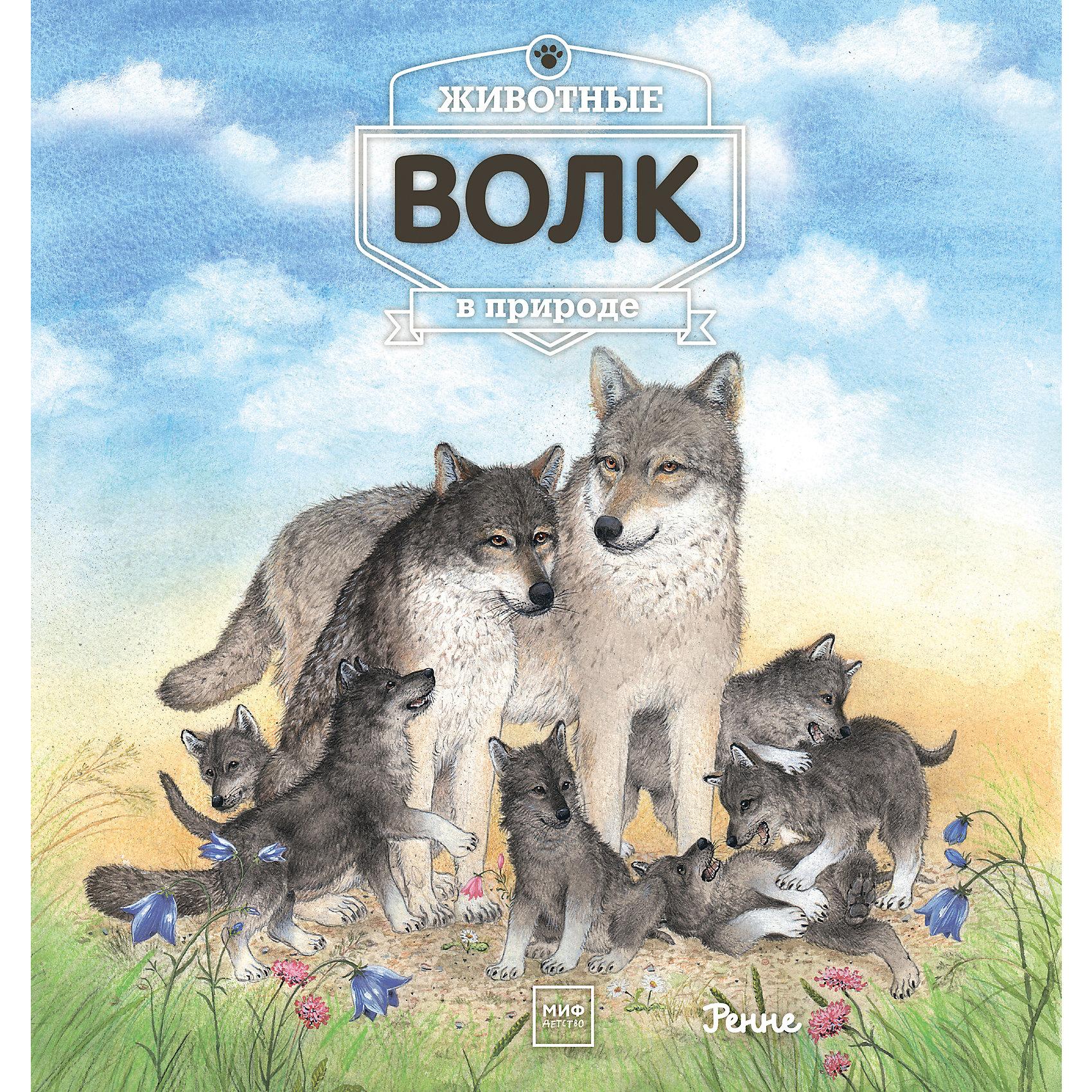 Животные в природе: ВолкЭнциклопедии о животных<br>Это первое знакомство ребенка с волком. В книге рассказывается о том, где живет этот сильный, умный зверь, чем он питается, как общается с сородичами, есть ли у него враги. Маленький почемучка узнает, как растут волчата, как они играют, как волчица приучает их к самостоятельности. И кто еще принадлежит к волчьему семейству.<br><br>Ширина мм: 265<br>Глубина мм: 250<br>Высота мм: 10<br>Вес г: 423<br>Возраст от месяцев: 60<br>Возраст до месяцев: 168<br>Пол: Унисекс<br>Возраст: Детский<br>SKU: 5535190