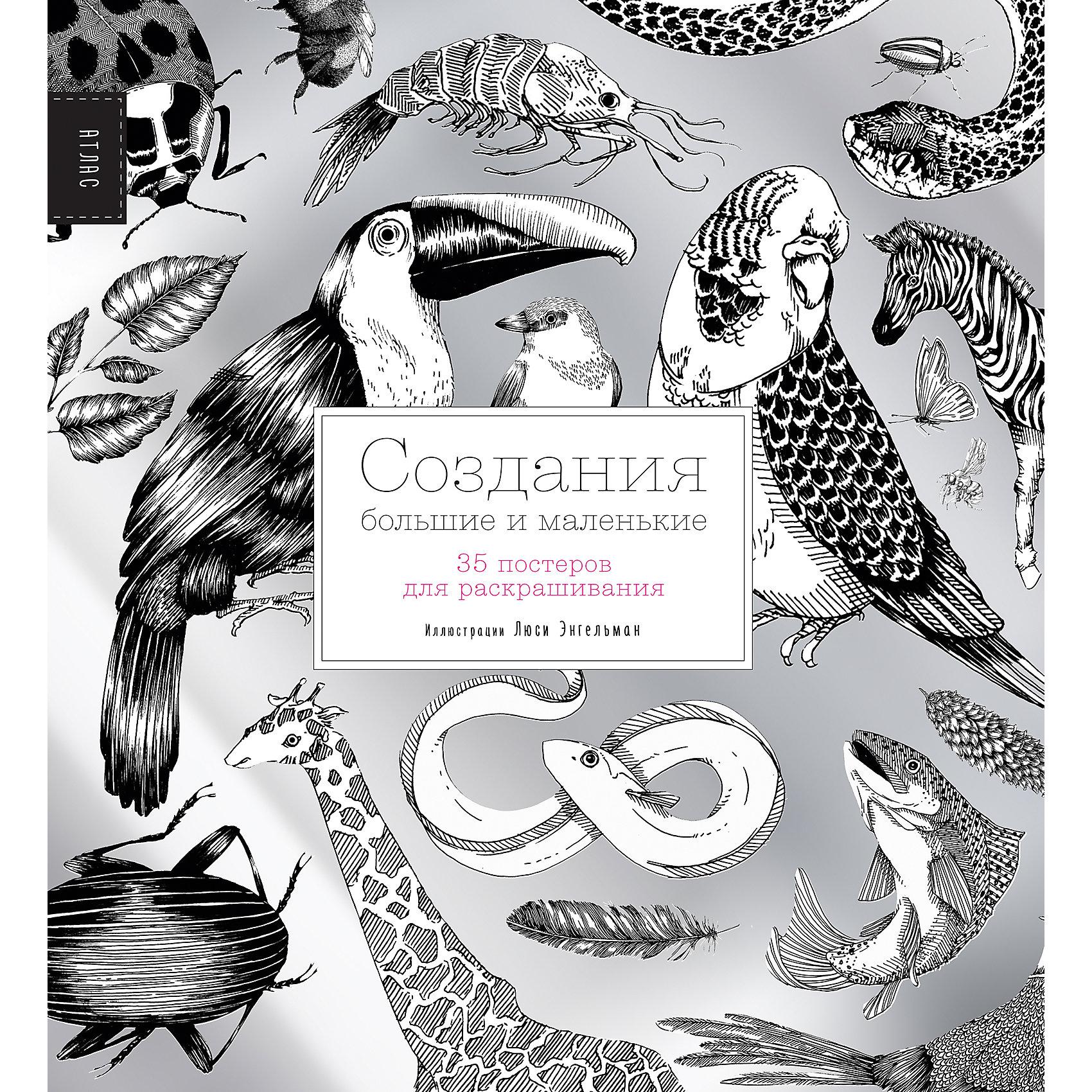 35 постеров для раскрашивания Создания большие и маленькиеВ раскраске 35 постеров, на каждом из которых представлены животные, объединённые по определённому принципу: летающие насекомые, обитатели коралловых рифов, кошки и т.п. Каждое животное подписано. На обороте листа читатель найдёт интереснфые факты про этих животных и описание их окраса.<br><br>Ширина мм: 280<br>Глубина мм: 260<br>Высота мм: 80<br>Вес г: 664<br>Возраст от месяцев: 144<br>Возраст до месяцев: 2147483647<br>Пол: Унисекс<br>Возраст: Детский<br>SKU: 5535275