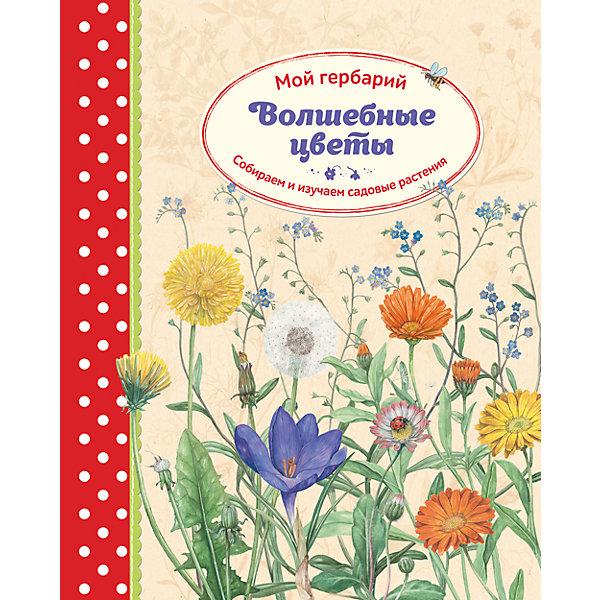 Волшебные цветы: Мой гербарийКниги по рукоделию<br>Характеристики товара: <br><br>• ISBN: 9785001001256<br>• возраст от: 5 лет<br>• формат: 70x100/16<br>• бумага: офсет<br>• обложка: твердая<br>• издательство: Манн, Иванов и Фербер<br>• иллюстрации: цветные<br>• автор: Циск Стефани<br>• художник: Баус Ларс<br>• переводчик: Кушнир Наталья<br>• количество страниц: 80<br>• размеры: 32x25 см<br><br>Издание «Волшебные цветы: Мой гербарий» - это книга для детей, после которой хочется создать свой собственный гербарий. В ней есть не только практические рекомендации по сбору и высушиванию растений под прессом, но также специальные странички для их хранения. <br><br>В книге есть сведения по строению растений и другая полезная информация, плюс - много идей для творчества с применением высушенных растений.<br><br>Книгу «Волшебные цветы: Мой гербарий» можно купить в нашем интернет-магазине.<br>Ширина мм: 320; Глубина мм: 255; Высота мм: 20; Вес г: 1032; Возраст от месяцев: 60; Возраст до месяцев: 2147483647; Пол: Унисекс; Возраст: Детский; SKU: 5535288;