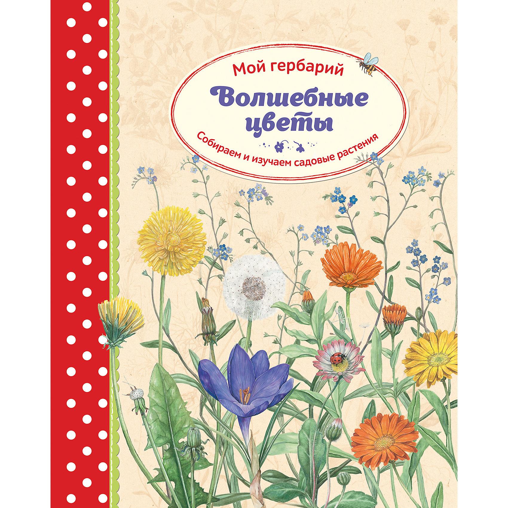 Волшебные цветы: Мой гербарийКниги по рукоделию<br>В этой книге представлены реалистичные иллюстрации 16 хорошо известных и всеми любимых садовых растений. Тот, кто давно мечтал создать свой собственный гербарий, найдёт в ней не только массу практических советов по сбору и высушиванию растений под прессом, но и с любовью оформленные странички для их хранения. Кроме того, в книге даются сведения по строению растений и другая ботаническая информация. А ещё в ней много идей для творчества с применением высушенных цветов и листьев.<br><br>Ширина мм: 320<br>Глубина мм: 255<br>Высота мм: 20<br>Вес г: 1032<br>Возраст от месяцев: 60<br>Возраст до месяцев: 2147483647<br>Пол: Унисекс<br>Возраст: Детский<br>SKU: 5535288