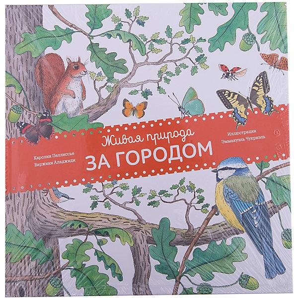 Купить Живая природа: За городом, Манн, Иванов и Фербер, Россия, Унисекс
