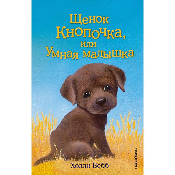 Щенок Кнопочка, или Умная малышкаМузыкальные книги<br>Характеристики товара: <br><br>• ISBN: 9785699925421<br>• возраст от: 6 лет<br>• формат: 84x108/32<br>• бумага: офсет<br>• обложка: твердая<br>• иллюстрации: черно-белые<br>• серия: Добрые истории о зверятах. Мировой бестселлер<br>• издательство: Эксмо<br>• автор: Вебб Холли<br>• художник: Вильямс Софи<br>• переводчик: Тихонова Анна Алексеевна<br>• количество страниц: 144<br>• размеры: 13x20 см<br><br>«Щенок Кнопочка, или Умная малышка» - это история, которая поможет научить ребенка доброте и состраданию.<br><br>Отличное качество издания, удобный формат, доступный язык - всё это поможет ребенку прочитать книгу с удовольствием. <br><br>Книгу «Щенок Кнопочка, или Умная малышка» можно купить в нашем интернет-магазине.<br>Ширина мм: 200; Глубина мм: 125; Высота мм: 130; Вес г: 253; Возраст от месяцев: 84; Возраст до месяцев: 2147483647; Пол: Унисекс; Возраст: Детский; SKU: 5535486;