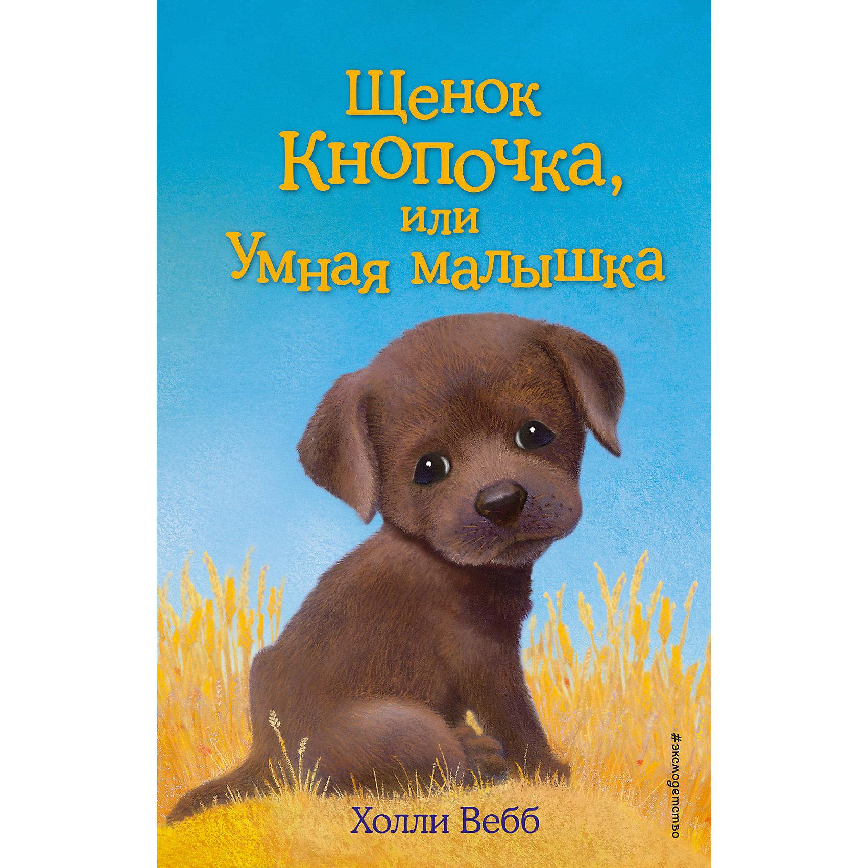 Щенок Кнопочка, или Умная малышкаМузыкальные книги<br>Характеристики товара: <br><br>• ISBN: 9785699925421<br>• возраст от: 6 лет<br>• формат: 84x108/32<br>• бумага: офсет<br>• обложка: твердая<br>• иллюстрации: черно-белые<br>• серия: Добрые истории о зверятах. Мировой бестселлер<br>• издательство: Эксмо<br>• автор: Вебб Холли<br>• художник: Вильямс Софи<br>• переводчик: Тихонова Анна Алексеевна<br>• количество страниц: 144<br>• размеры: 13x20 см<br><br>«Щенок Кнопочка, или Умная малышка» - это история, которая поможет научить ребенка доброте и состраданию.<br><br>Отличное качество издания, удобный формат, доступный язык - всё это поможет ребенку прочитать книгу с удовольствием. <br><br>Книгу «Щенок Кнопочка, или Умная малышка» можно купить в нашем интернет-магазине.<br><br>Ширина мм: 200<br>Глубина мм: 125<br>Высота мм: 130<br>Вес г: 253<br>Возраст от месяцев: 84<br>Возраст до месяцев: 2147483647<br>Пол: Унисекс<br>Возраст: Детский<br>SKU: 5535486