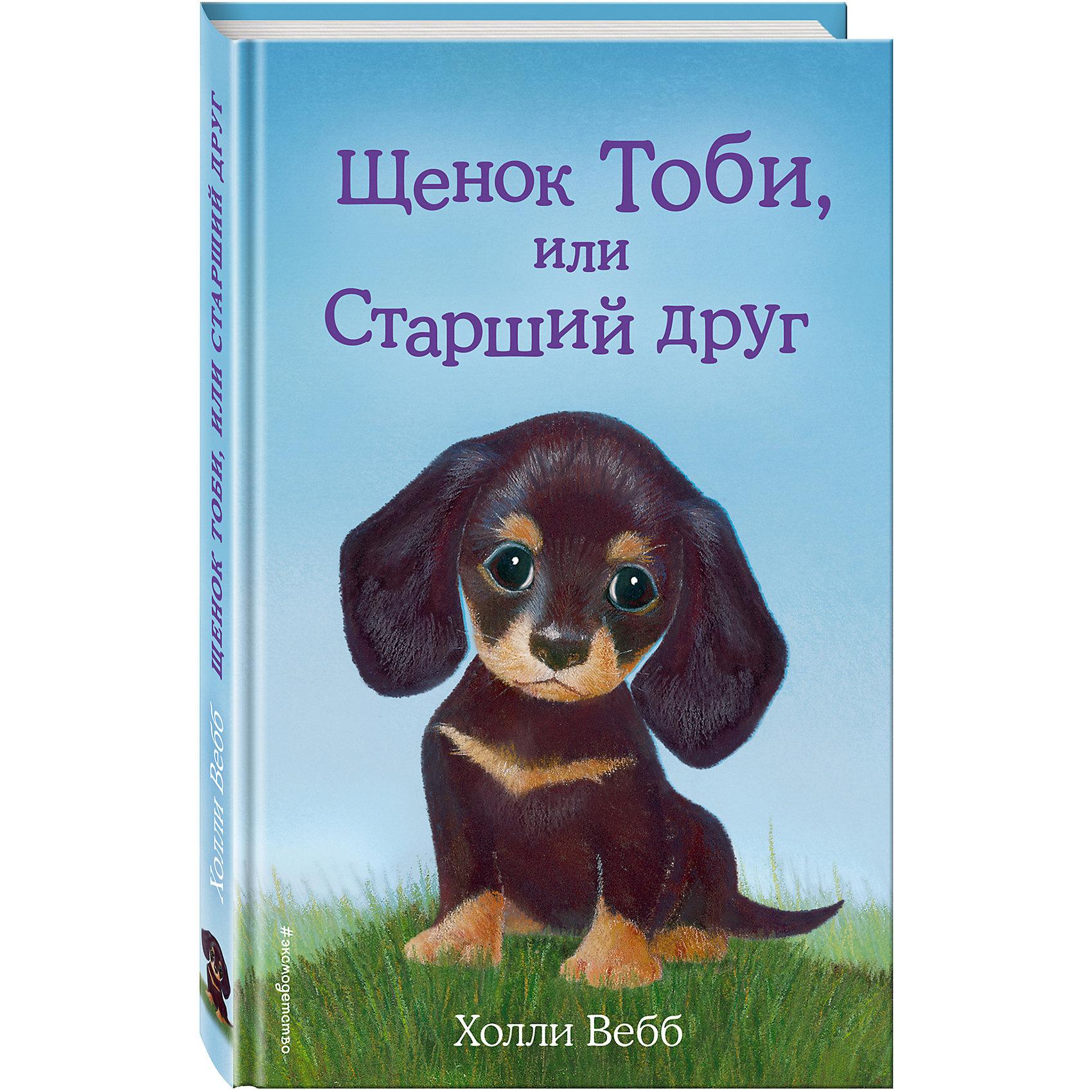 Щенок Тоби, или Старший другСказки, рассказы, стихи<br>Девочка Руби получила долгожданный подарок – щенка Тоби. Тоби – кроличья такса, то есть совсем крошечный, но очень любопытный и очень громкий песик. Он с лаем бросался на любую собаку, неважно какого размера, лишь та подходила к его обожаемой хозяйке. Тоби думал, что так он защищает девочку, а Руби было стыдно за поведение щенка. Для того, чтобы ходить в школу дрессировки, Тоби еще слишком маленький, поэтому Руби с любимцем стали гулять в безлюдных местах.<br>И однажды Тоби потерялся. Руби очень за него испугалась, она знала, сколько опасностей грозит щенку на улице. Но мир не без добрых людей и собак, главное – не облаять спасителей!<br><br>Ширина мм: 200<br>Глубина мм: 125<br>Высота мм: 60<br>Вес г: 255<br>Возраст от месяцев: 84<br>Возраст до месяцев: 2147483647<br>Пол: Унисекс<br>Возраст: Детский<br>SKU: 5535488