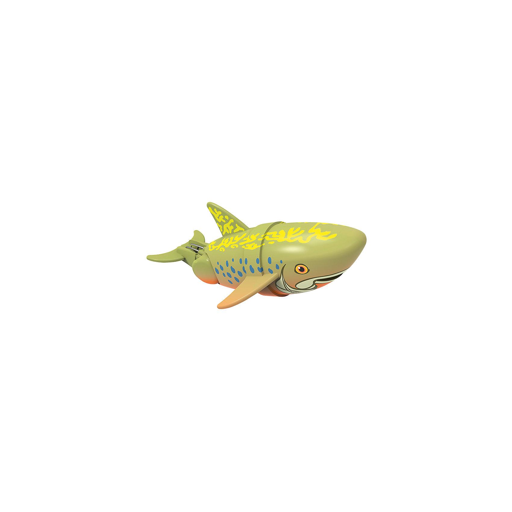 Интерактивная игрушка Рыбка-акробат - Брукс, 12 см Море чудесРоборыбки<br>Характеристики товара:<br><br>• возраст от 3 лет<br>• материал: пластик<br>• длина рыбки 12 см<br>• тип батареек: 2 x AAA / LR0.3 1.5V (мизинчиковые)<br>• наличие батареек: не входят в комплект<br>• размер упаковки 16х14х8,5 см<br>• вес упаковки 416 г.<br>• упаковка: блистер на картоне<br>• страна производитель: Китай<br><br>Рыбка-акробат Брукс Redwood — интерактивная игрушка для ванной, которая сделает процесс купания малыша веселым и увлекательным. Рыбка умеет плавать и нырять. Двигая плавниками и хвостом в разных направлениях, она начинает плыть. На корпусе имеется небольшое отверстие, в которое можно продеть веревочку и брать рыбку с собой на водоем. <br><br>Рыбку-акробат Брукс Redwood можно приобрести в нашем интернет-магазине.<br><br>Ширина мм: 160<br>Глубина мм: 140<br>Высота мм: 85<br>Вес г: 416<br>Возраст от месяцев: 36<br>Возраст до месяцев: 2147483647<br>Пол: Унисекс<br>Возраст: Детский<br>SKU: 5544172