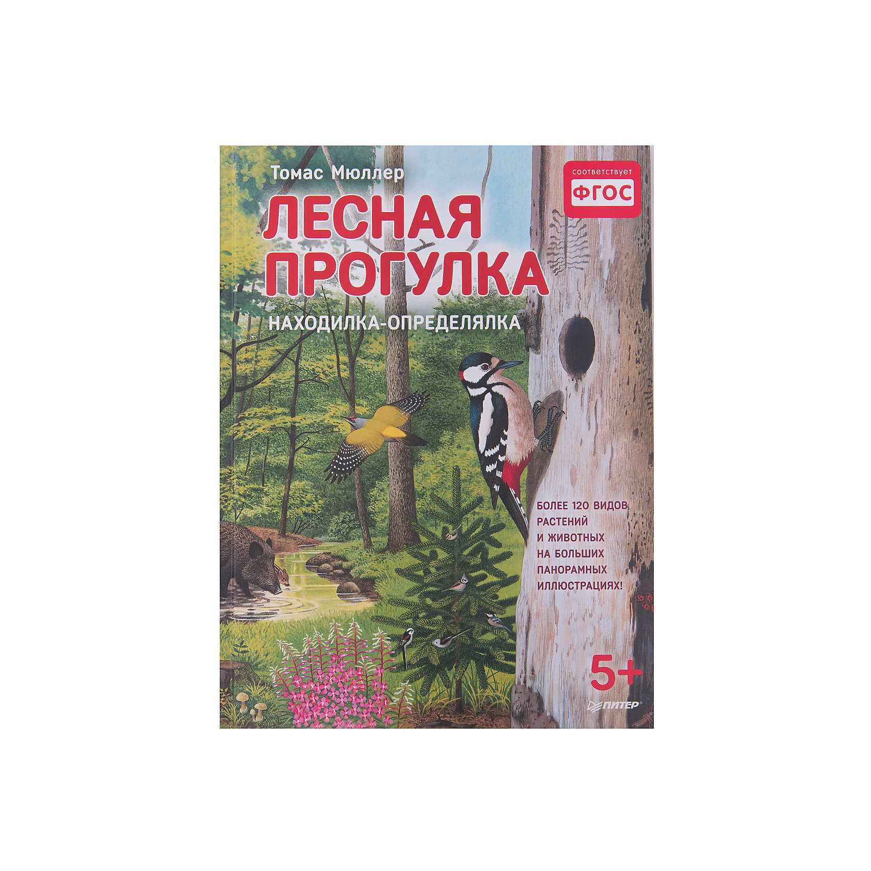 Книжка с иллюстрациями Лесная прогулкаВиммельбухи<br>Характеристики товара:<br><br>• количество страниц: 28;<br>• формат: 22х29;<br>• обложка: твердая;<br>• ISBN: 978-5-496-02543-0;<br>• размер упаковки: 6х22,1х29,8 см;<br>• вес: 393 грамма.<br><br>Книжка «Лесная прогулка» перенесет читателя в лес и познакомит с его обитателями. Первые 4 страницы представляют собой большую панораму с изображением жителей леса. <br><br>На других страницах юный читатель насладится прекрасными видами животных, птиц, насекомых, деревьев и растений, а также узнает много интересных фактов и даже выполнит задания.<br><br>Книжку с иллюстрациями Лесная прогулка можно купить в нашем интернет-магазине.<br><br>Ширина мм: 298<br>Глубина мм: 221<br>Высота мм: 60<br>Вес г: 393<br>Возраст от месяцев: 12<br>Возраст до месяцев: 2147483647<br>Пол: Унисекс<br>Возраст: Детский<br>SKU: 5576703