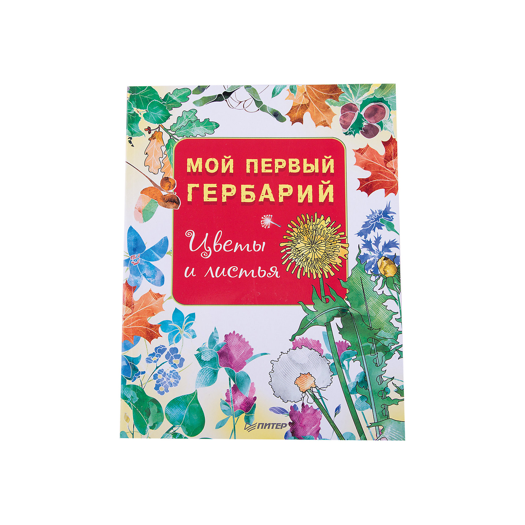 Книга Мой первый гербарий: Цветы и листьяКниги по рукоделию<br>Характеристики товара:<br><br>• количество страниц: 48;<br>• формат: 20,5х26;<br>• обложка: мягкая;<br>• ISBN: 978-5-496-02964-3;<br>• размер упаковки: 10х19,5х25,2 см;<br>• вес: 166 грамм.<br><br>«Мой первый гербарий: Цветы и листья» - книга для детей дошкольного и младшего школьного возраста. В ней ребенок найдет интересные советы по сбору и засушиванию материалов, а также ознакомится с самыми распространенными видами растений России.<br><br>Описания растений дополнены иллюстрациями.<br><br>Книгу Мой первый гербарий: Цветы и листья можно купить в нашем интернет-магазине.<br><br>Ширина мм: 252<br>Глубина мм: 195<br>Высота мм: 100<br>Вес г: 166<br>Возраст от месяцев: 72<br>Возраст до месяцев: 2147483647<br>Пол: Унисекс<br>Возраст: Детский<br>SKU: 5576704