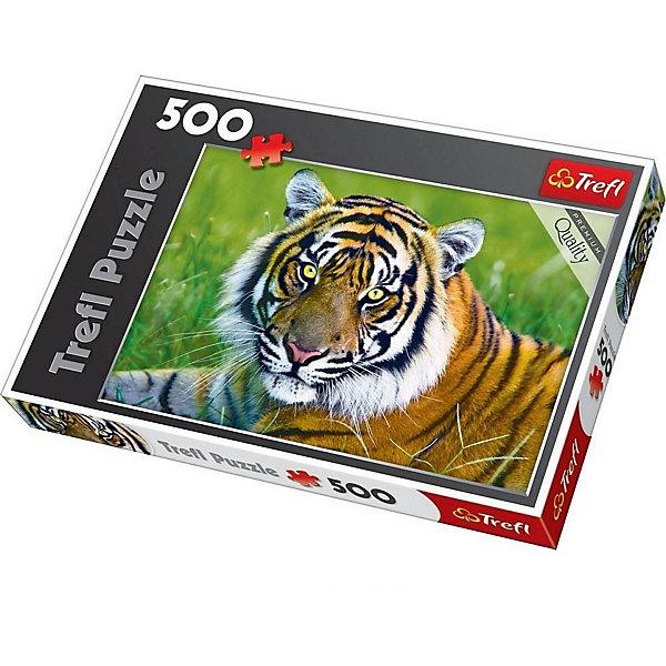 Пазл Тигр, 500 деталей, TreflПазлы для детей постарше<br>Характеристики товара:<br><br>• возраст от 9 лет;<br>• материал: картон;<br>• в наборе: 500 элементов;<br>• размер пазла 48х34 см;<br>• размер упаковки 40х27х5 см;<br>• вес упаковки 500 гр.;<br>• страна производитель Польша.<br><br>Пазл «Тигр» Trefl — пазл с изображением тигра на траве.  Собирая пазл, у ребенка развиваются логическое мышление, моторика рук, внимательность к деталям, усидчивость. Все элементы выполнены из качественного экологически чистого картона со специальным стойким покрытием.<br><br>Пазл «Тигр» Trefl можно приобрести в нашем интернет-магазине.<br><br>Ширина мм: 400<br>Глубина мм: 270<br>Высота мм: 50<br>Вес г: 500<br>Возраст от месяцев: 108<br>Возраст до месяцев: 2147483647<br>Пол: Унисекс<br>Возраст: Детский<br>SKU: 5578458