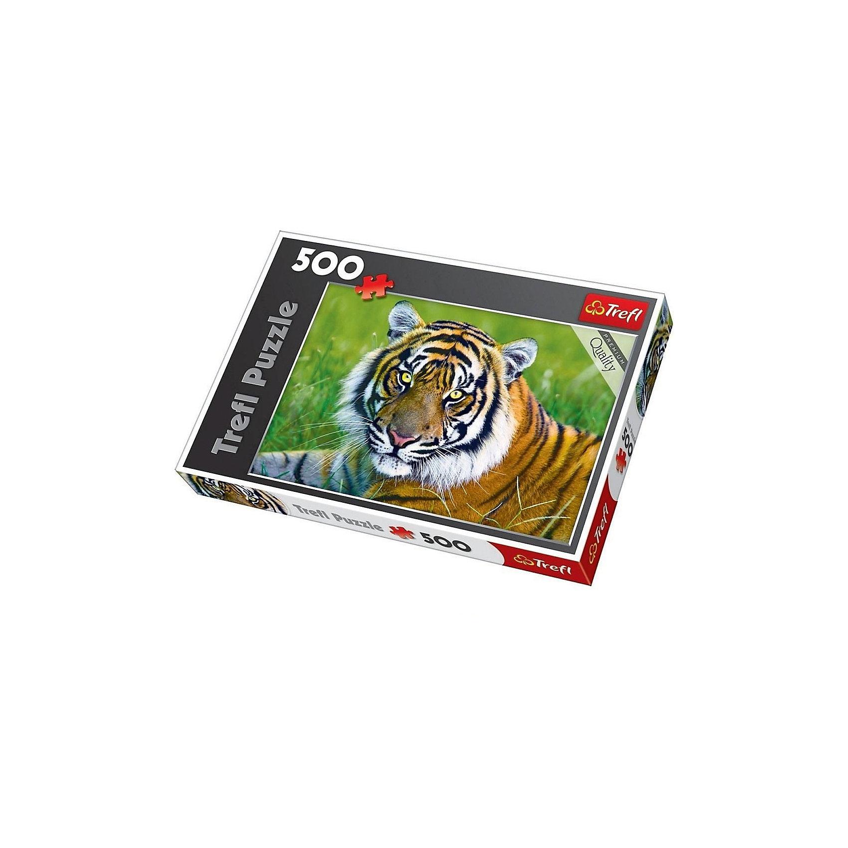 Пазл Тигр, 500 деталей, TreflКлассические пазлы<br>Характеристики товара:<br><br>• возраст от 9 лет;<br>• материал: картон;<br>• в наборе: 500 элементов;<br>• размер пазла 48х34 см;<br>• размер упаковки 40х27х5 см;<br>• вес упаковки 500 гр.;<br>• страна производитель Польша.<br><br>Пазл «Тигр» Trefl — пазл с изображением тигра на траве.  Собирая пазл, у ребенка развиваются логическое мышление, моторика рук, внимательность к деталям, усидчивость. Все элементы выполнены из качественного экологически чистого картона со специальным стойким покрытием.<br><br>Пазл «Тигр» Trefl можно приобрести в нашем интернет-магазине.<br><br>Ширина мм: 400<br>Глубина мм: 270<br>Высота мм: 50<br>Вес г: 500<br>Возраст от месяцев: 108<br>Возраст до месяцев: 2147483647<br>Пол: Унисекс<br>Возраст: Детский<br>SKU: 5578458