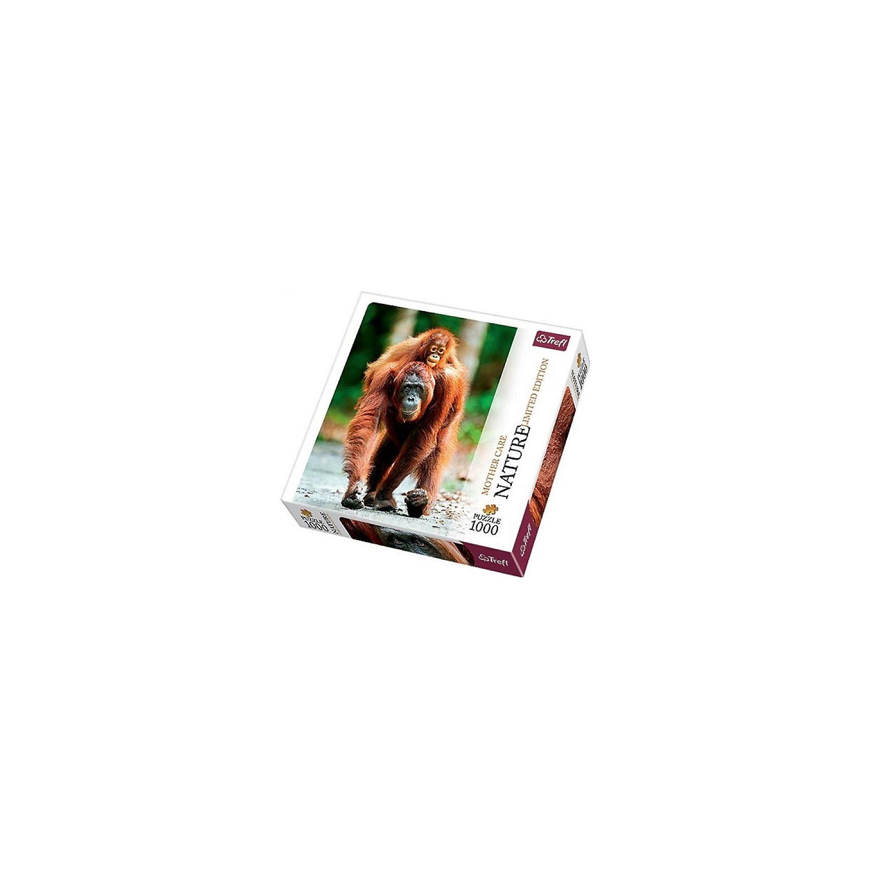 Пазл Орангутан, 1000 деталей, TreflКлассические пазлы<br>Характеристики товара:<br><br>• возраст от 7 лет;<br>• материал: картон;<br>• в наборе: 1000 элементов;<br>• размер пазла 68х48 см;<br>• размер упаковки 27х40х6 см;<br>• вес упаковки 750 гр.;<br>• страна производитель Польша.<br><br>Пазл «Орангутан» Trefl — красочный пазл с изображением орангутана и его детеныша. Собирание пазла — увлекательное занятие, во время которого развиваются внимательность, усидчивость, аккуратность. Пазл изготовлен из качественных экологически чистых материалов. <br><br>Пазл «Орангутан» Trefl можно приобрести в нашем интернет-магазине.<br><br>Ширина мм: 260<br>Глубина мм: 260<br>Высота мм: 40<br>Вес г: 750<br>Возраст от месяцев: 72<br>Возраст до месяцев: 2147483647<br>Пол: Унисекс<br>Возраст: Детский<br>SKU: 5578461