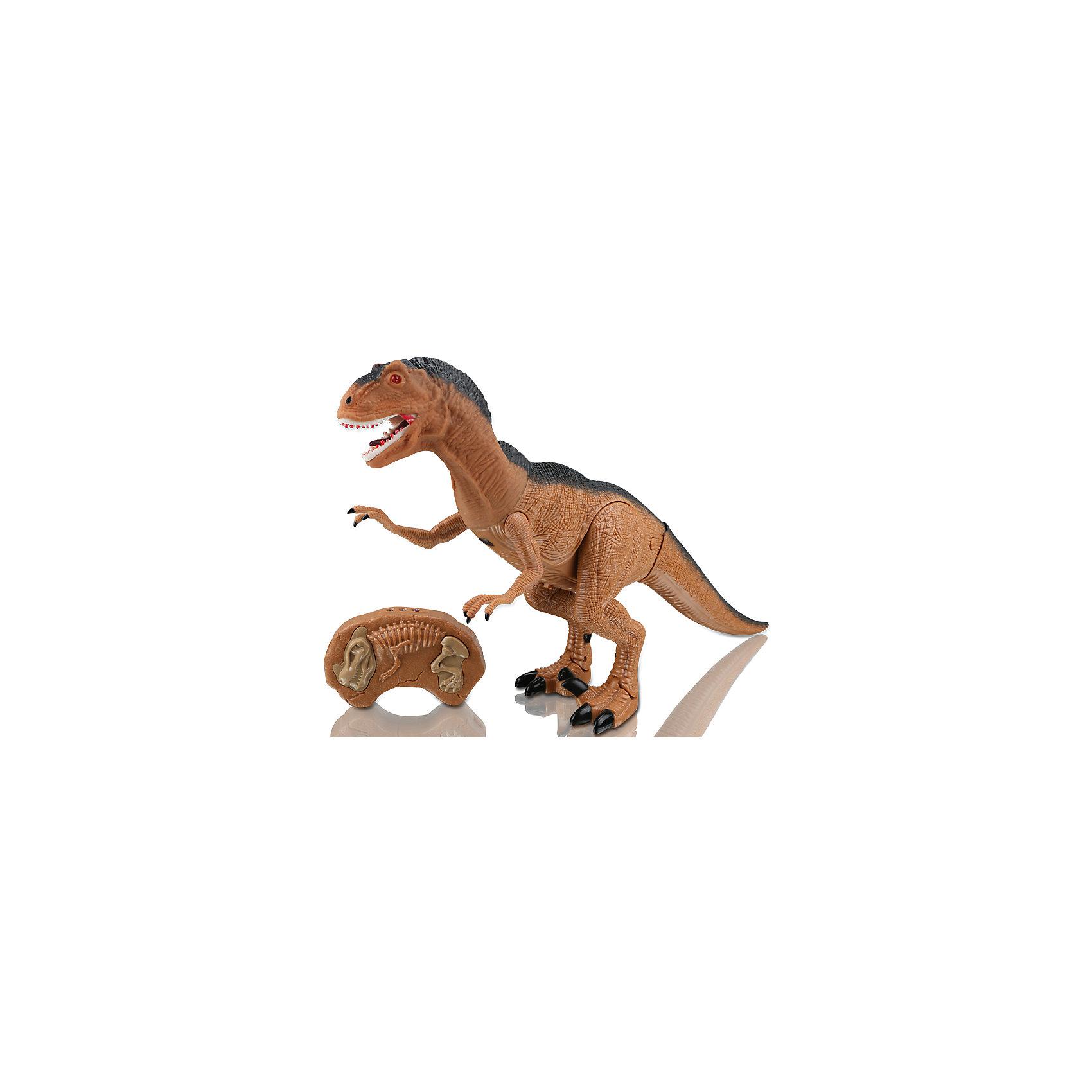 Динозавр на и/к управлении Грозный охотник, Mioshi ActiveИдеи подарков<br>Характеристики товара:<br><br>• возраст от 3 лет;<br>• материал: пластик;<br>• в комплекте: динозавр, пульт;<br>• игрушка работает от батареек (в комплект не входят);<br>• высота динозавра 47 см;<br>• размер упаковки 51х31х12 см;<br>• вес упаковки 1,45 кг;<br>• страна производитель: Китай.<br><br>Динозавр «Грозный охотник» Mioshi Active — игрушка, которая управляется при помощи пульта управления. Динозавр двигается, вертит головой и издает грозное рычание. При включении у него загораются глаза. Игрушка выполнена из качественного прочного материала. <br><br>Динозавра «Грозный охотник» Mioshi Active можно приобрести в нашем интернет-магазине.<br><br>Ширина мм: 510<br>Глубина мм: 120<br>Высота мм: 310<br>Вес г: 1450<br>Возраст от месяцев: 36<br>Возраст до месяцев: 72<br>Пол: Унисекс<br>Возраст: Детский<br>SKU: 5581246