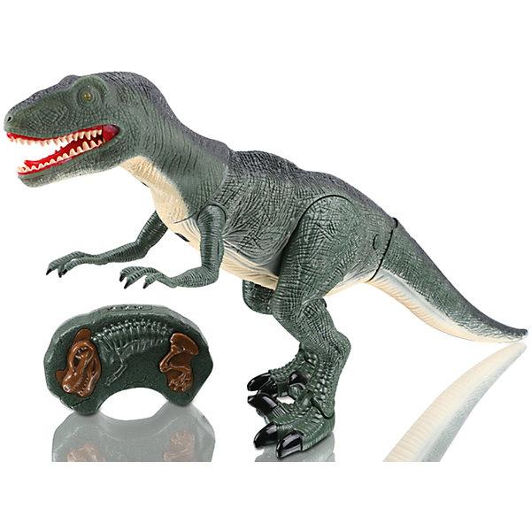 Динозавр на и/к управлении Древний хищник, Mioshi ActiveИдеи подарков<br>Характеристики товара:<br><br>• возраст от 3 лет;<br>• материал: пластик;<br>• в комплекте: динозавр, пульт;<br>• игрушка работает от батареек (в комплект не входят);<br>• высота динозавра 47 см;<br>• размер упаковки 51х31х12 см;<br>• вес упаковки 1,45 кг;<br>• страна производитель: Китай.<br><br>Динозавр «Древний хищник» Mioshi Active — игрушка, которая управляется при помощи пульта управления. Динозавр двигается, вертит головой и издает грозное рычание. При включении у него загораются глаза. Игрушка выполнена из качественного прочного материала. <br><br>Динозавра «Древний хищник» Mioshi Active можно приобрести в нашем интернет-магазине.<br>Ширина мм: 510; Глубина мм: 120; Высота мм: 310; Вес г: 1450; Возраст от месяцев: 36; Возраст до месяцев: 72; Пол: Унисекс; Возраст: Детский; SKU: 5581248;