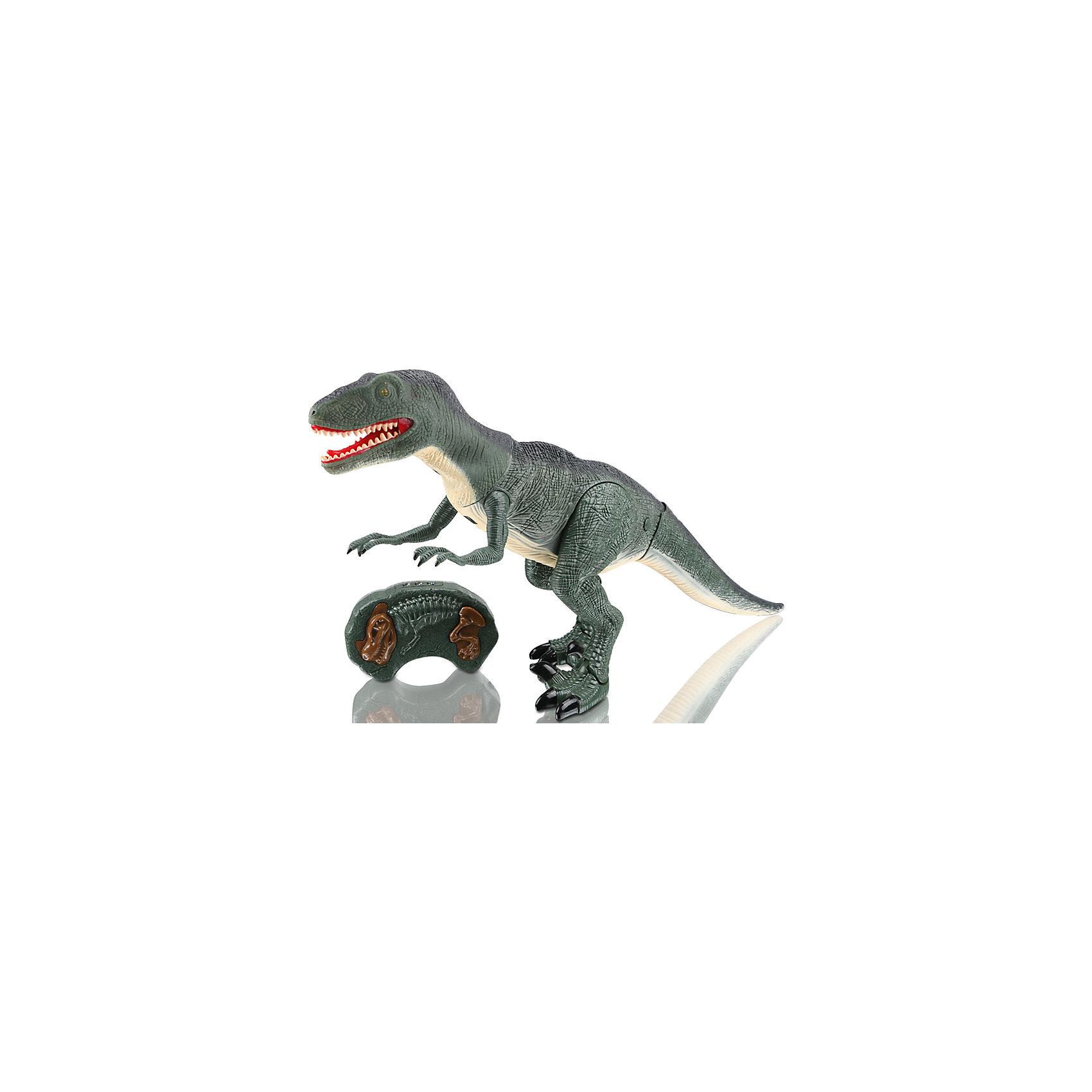 Динозавр на и/к управлении Древний хищник, Mioshi ActiveИдеи подарков<br>Характеристики товара:<br><br>• возраст от 3 лет;<br>• материал: пластик;<br>• в комплекте: динозавр, пульт;<br>• игрушка работает от батареек (в комплект не входят);<br>• высота динозавра 47 см;<br>• размер упаковки 51х31х12 см;<br>• вес упаковки 1,45 кг;<br>• страна производитель: Китай.<br><br>Динозавр «Древний хищник» Mioshi Active — игрушка, которая управляется при помощи пульта управления. Динозавр двигается, вертит головой и издает грозное рычание. При включении у него загораются глаза. Игрушка выполнена из качественного прочного материала. <br><br>Динозавра «Древний хищник» Mioshi Active можно приобрести в нашем интернет-магазине.<br><br>Ширина мм: 510<br>Глубина мм: 120<br>Высота мм: 310<br>Вес г: 1450<br>Возраст от месяцев: 36<br>Возраст до месяцев: 72<br>Пол: Унисекс<br>Возраст: Детский<br>SKU: 5581248