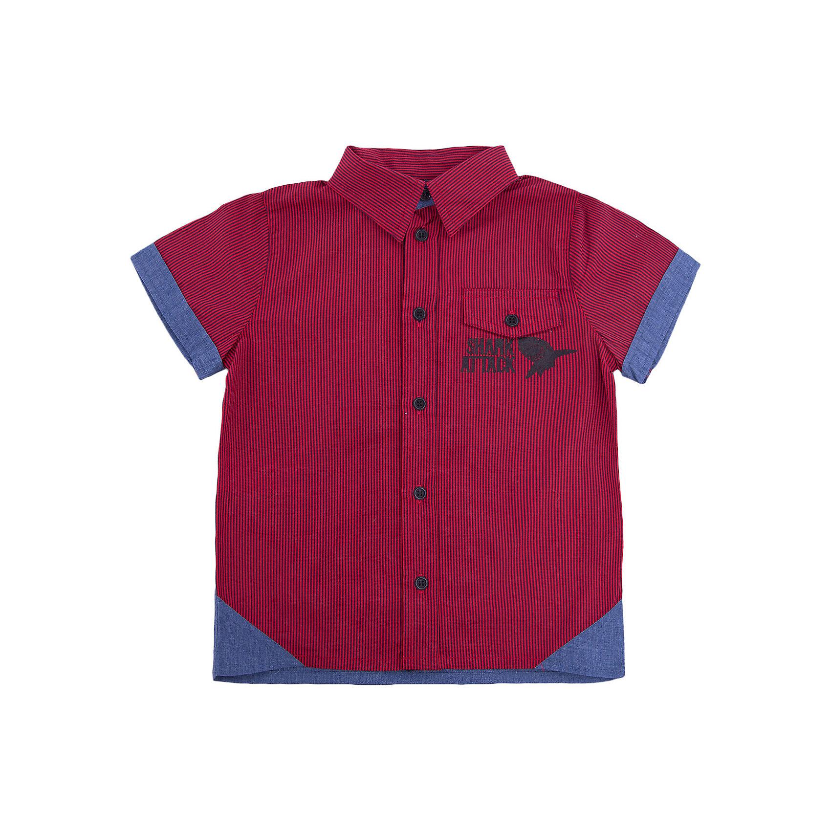 Рубашка для мальчика WojcikБлузки и рубашки<br>Рубашка для мальчика Wojcik<br>Состав:<br>Хлопок 100%<br><br>Ширина мм: 174<br>Глубина мм: 10<br>Высота мм: 169<br>Вес г: 157<br>Цвет: красный<br>Возраст от месяцев: 120<br>Возраст до месяцев: 132<br>Пол: Мужской<br>Возраст: Детский<br>Размер: 146,104,110,116,122,128,134,140<br>SKU: 5588811