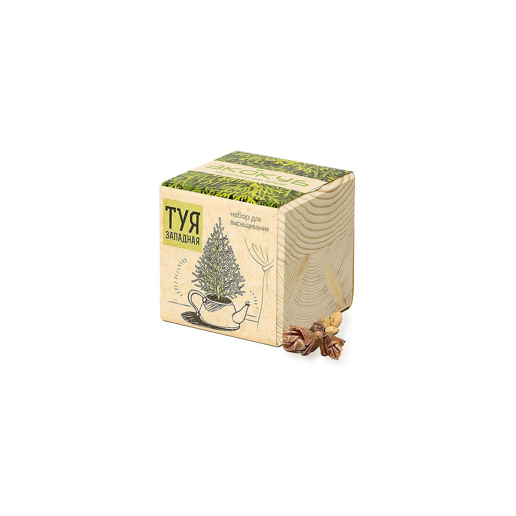 Набор для выращивания Туя, ЭкокубВыращивание растений<br>Наборы Эко Куб - удивительная вещь, которая станет необычным украшением дома или оригинальным подарком. С виду это лишь маленьникй деревянный кубик, но внутри него спрятано настоящее деревце, которое вы самостоятельно сможете прорастить из семечка и собрать урожай. Это увлекательное и полезное занятие для всей семьи, которое поможет родителям стать ближе к своим детям. Набор учит ребенка заботиться о живых существах, воспитывает чувство ответственности.<br><br>Ширина мм: 80<br>Глубина мм: 80<br>Высота мм: 80<br>Вес г: 197<br>Возраст от месяцев: 60<br>Возраст до месяцев: 2147483647<br>Пол: Унисекс<br>Возраст: Детский<br>SKU: 5596051