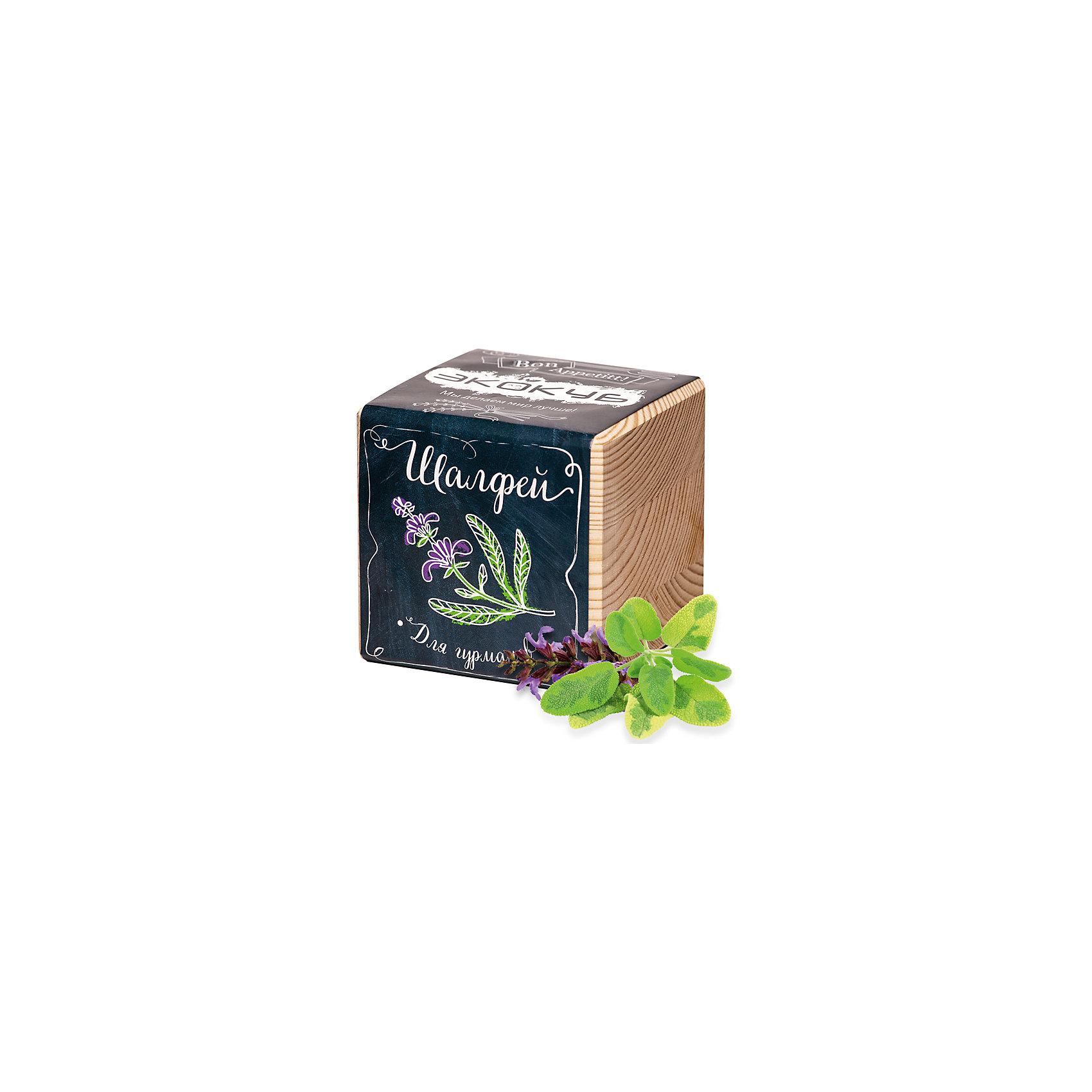 Набор для выращивания Шалфей, ЭкокубНаборы для выращивания растений<br>Наборы Эко Куб - удивительная вещь, которая станет необычным украшением дома или оригинальным подарком. С виду это лишь маленьникй деревянный кубик, но внутри него спрятано настоящее деревце, которое вы самостоятельно сможете прорастить из семечка и собрать урожай. Это увлекательное и полезное занятие для всей семьи, которое поможет родителям стать ближе к своим детям. Набор учит ребенка заботиться о живых существах, воспитывает чувство ответственности.<br><br>Ширина мм: 80<br>Глубина мм: 80<br>Высота мм: 80<br>Вес г: 204<br>Возраст от месяцев: 60<br>Возраст до месяцев: 2147483647<br>Пол: Унисекс<br>Возраст: Детский<br>SKU: 5596059