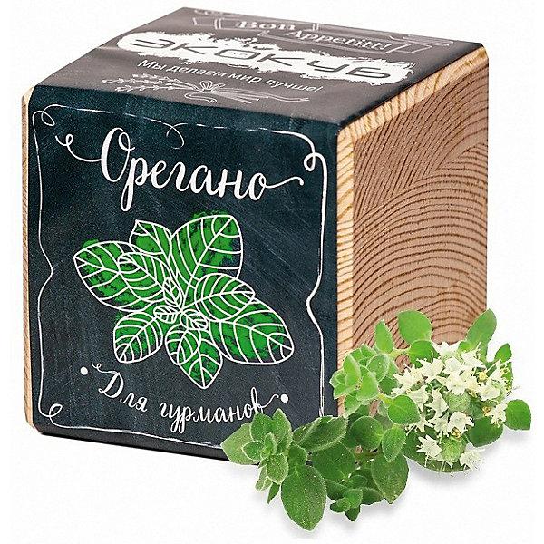Набор для выращивания Орегано, ЭкокубВыращивание растений<br>Наборы Эко Куб - удивительная вещь, которая станет необычным украшением дома или оригинальным подарком. С виду это лишь маленьникй деревянный кубик, но внутри него спрятано настоящее деревце, которое вы самостоятельно сможете прорастить из семечка и собрать урожай. Это увлекательное и полезное занятие для всей семьи, которое поможет родителям стать ближе к своим детям. Набор учит ребенка заботиться о живых существах, воспитывает чувство ответственности.<br>Ширина мм: 80; Глубина мм: 80; Высота мм: 80; Вес г: 212; Возраст от месяцев: 60; Возраст до месяцев: 2147483647; Пол: Унисекс; Возраст: Детский; SKU: 5596060;